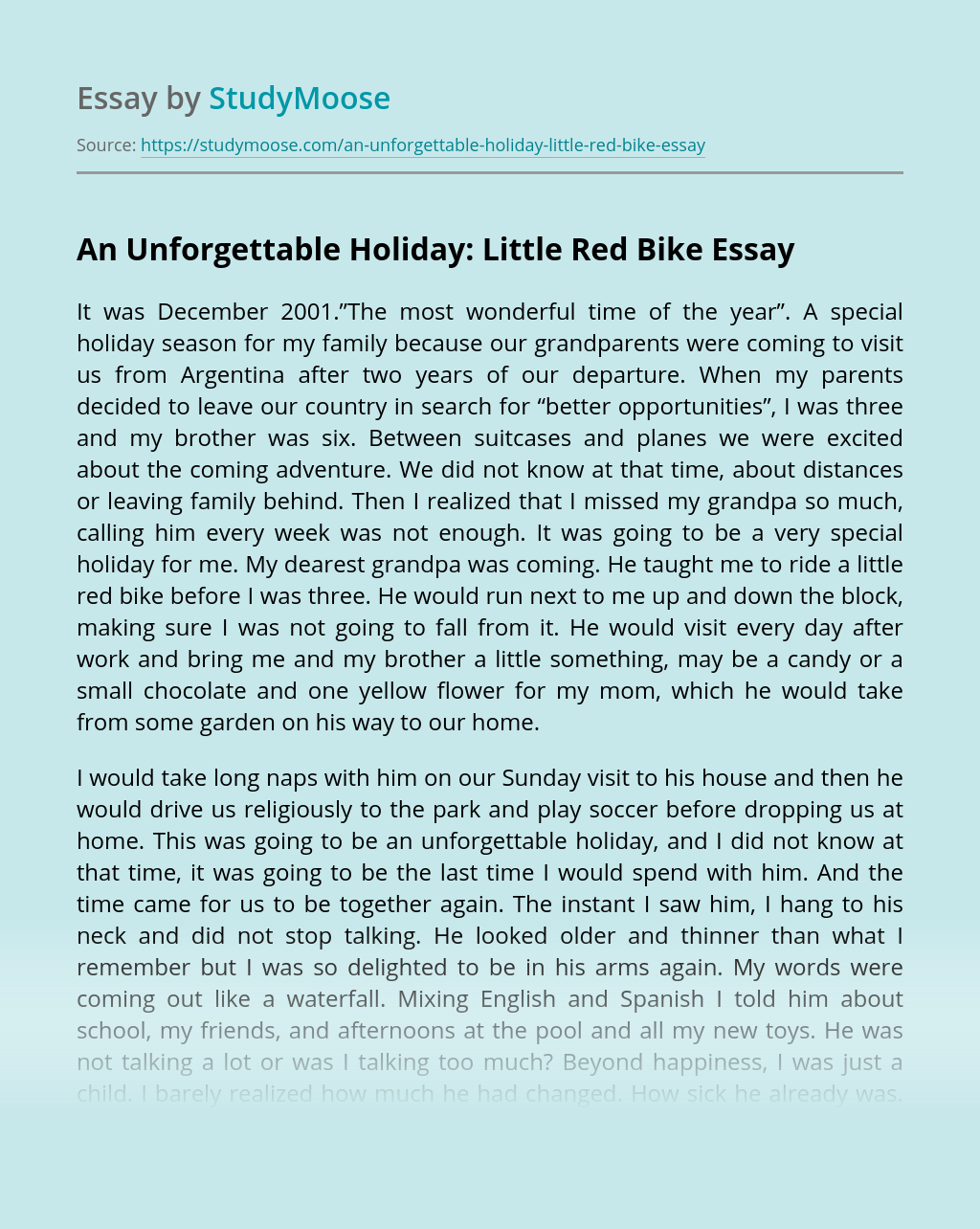 An Unforgettable Holiday: Little Red Bike