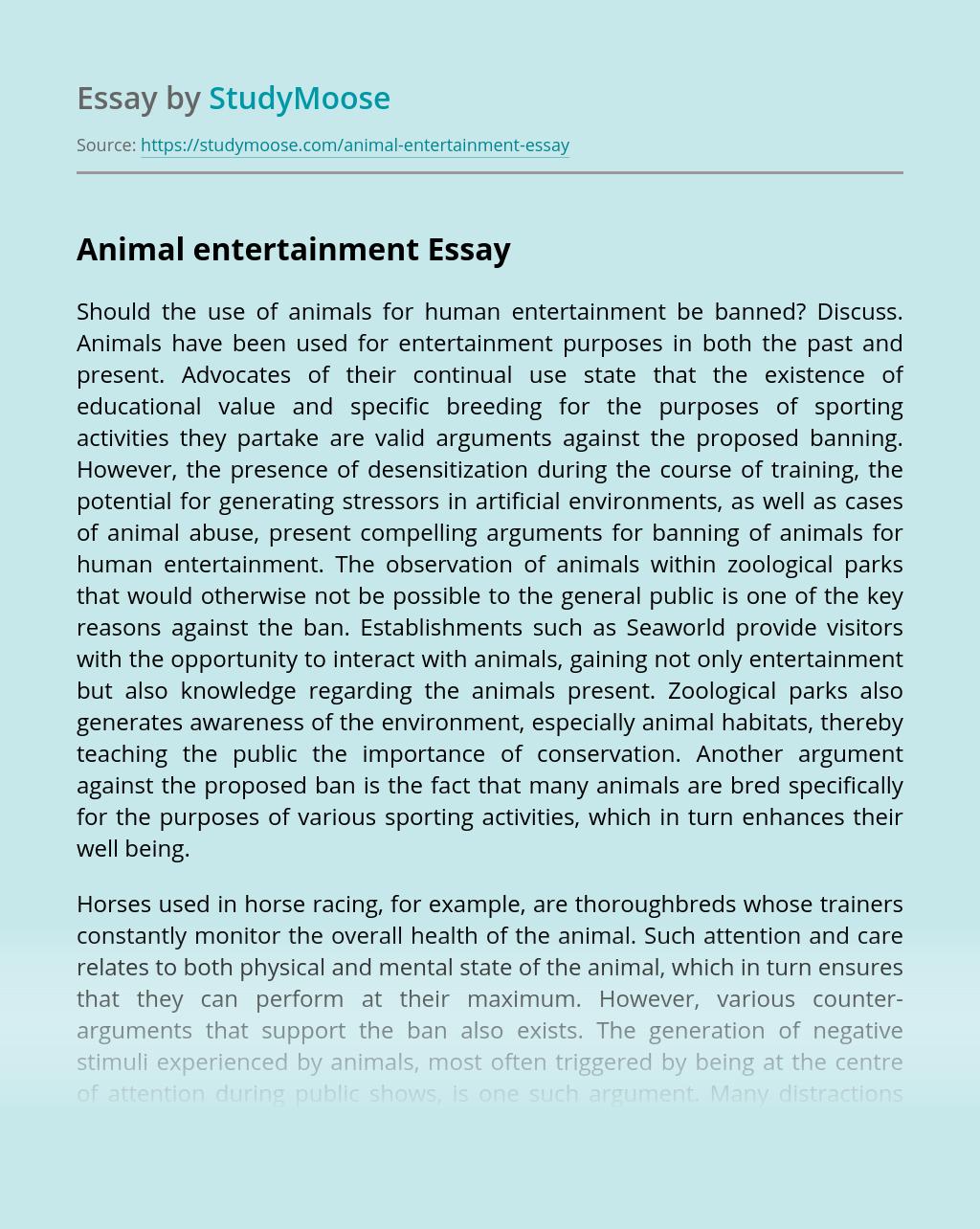 Animal entertainment