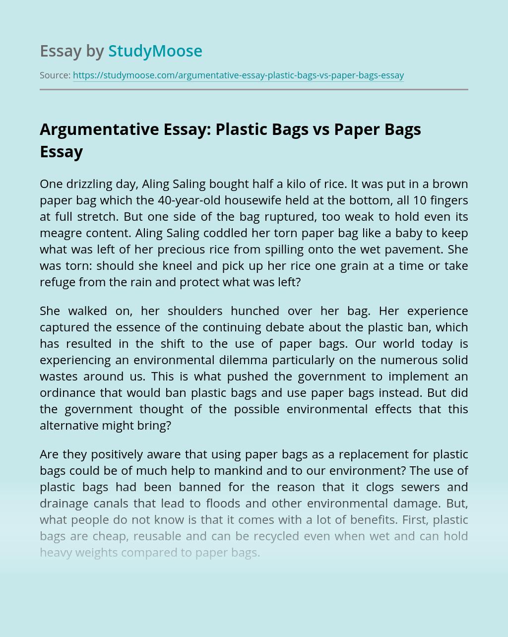 Argumentative Essay: Plastic Bags vs Paper Bags