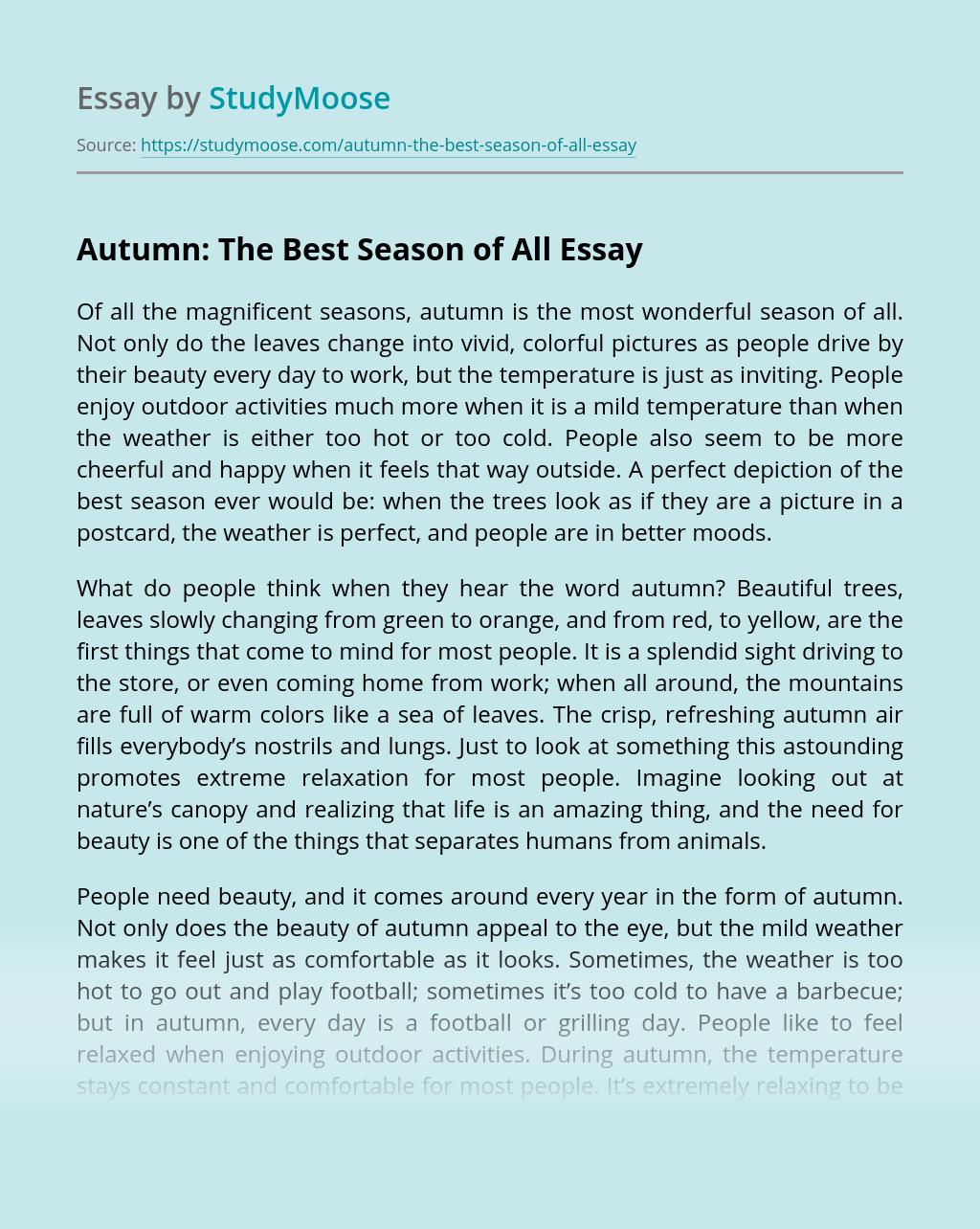 Princeton supplement essays 2013