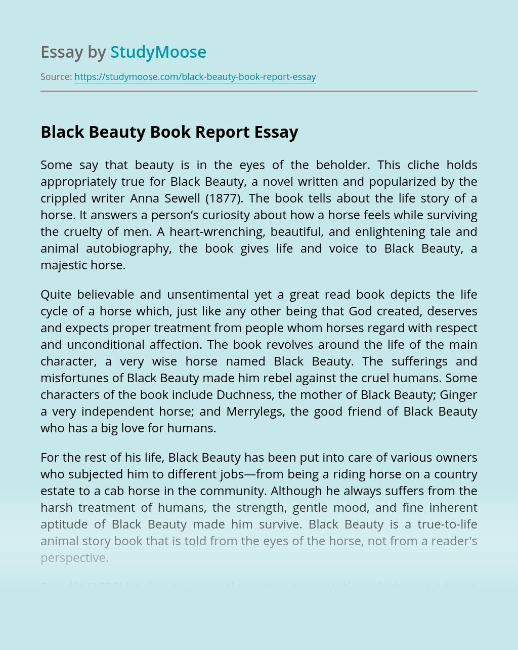 Black Beauty Book Report