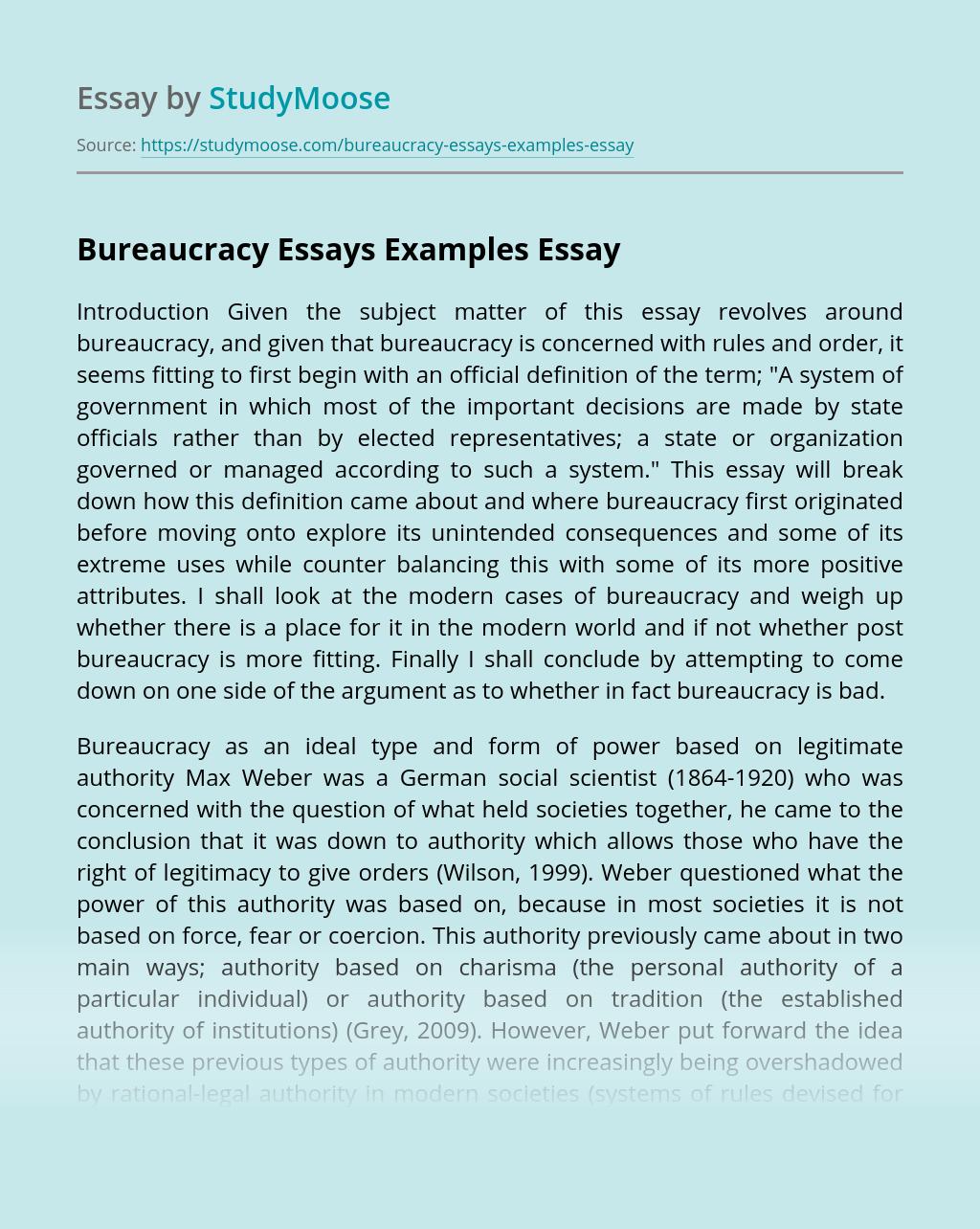 Bureaucracy Essays Examples
