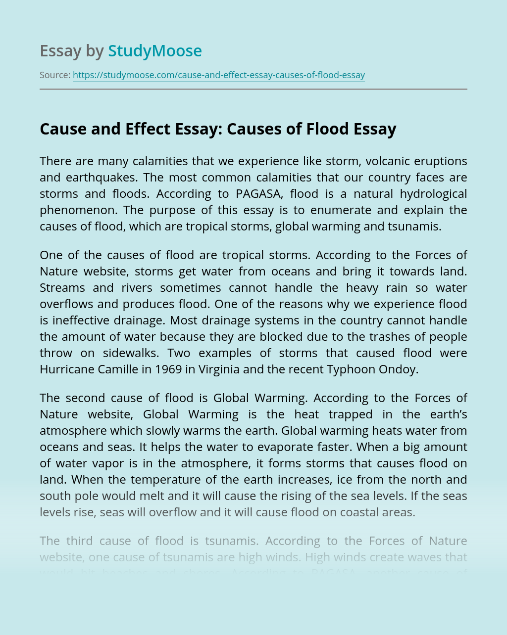 Cause and Effect Essay: Causes of Flood