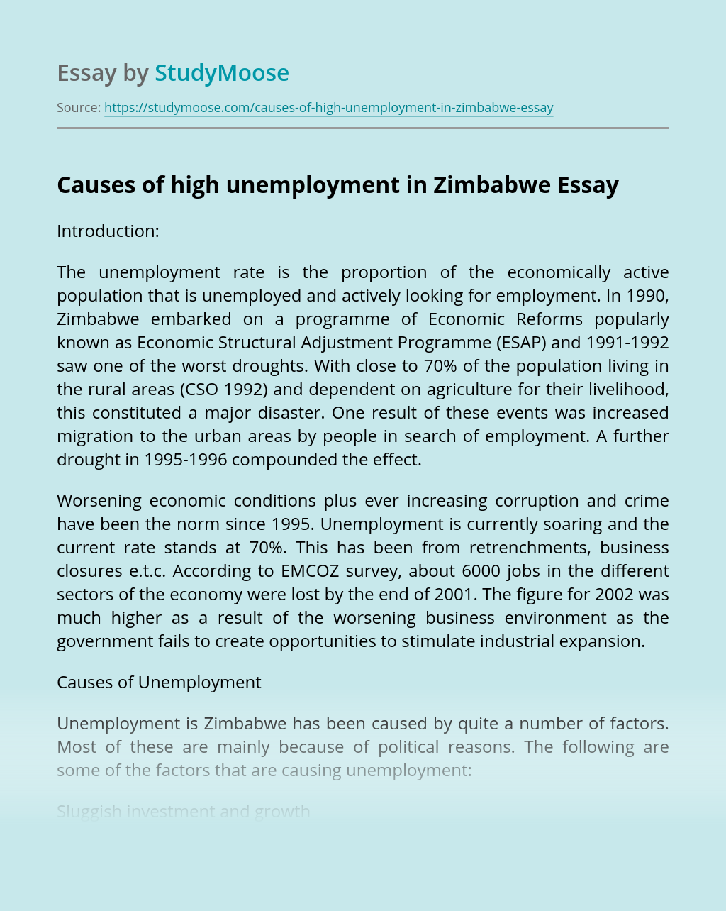 Causes of high unemployment in Zimbabwe