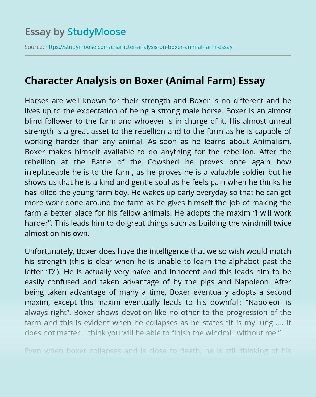 Character Analysis on Boxer (Animal Farm)
