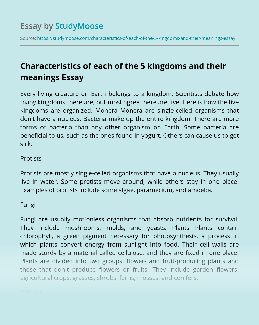 Characteristics of each of the 5 kingdoms and their meanings