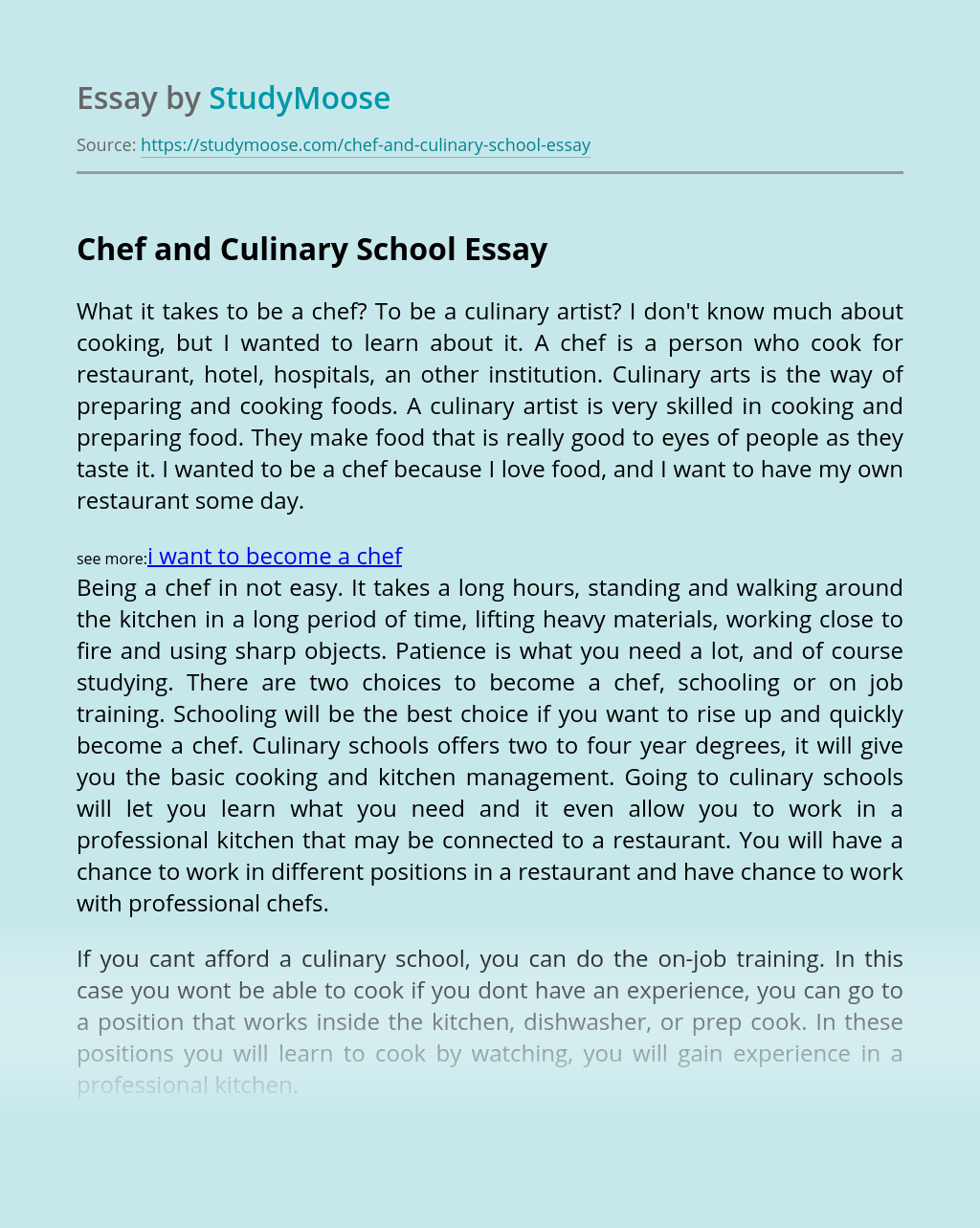 Chef and Culinary School