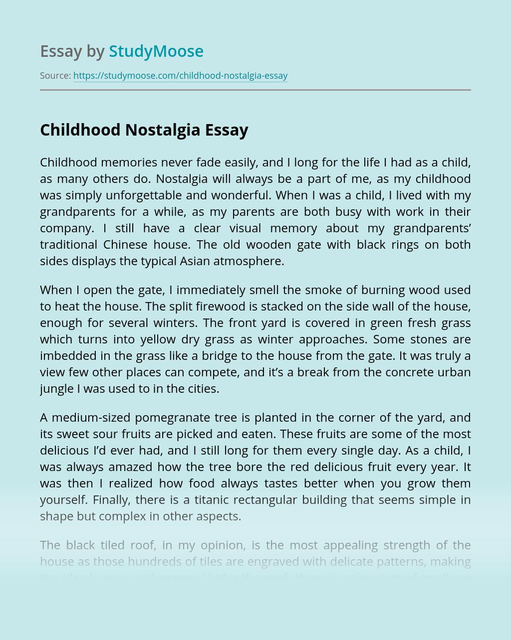 Childhood Nostalgia Free Essay Example