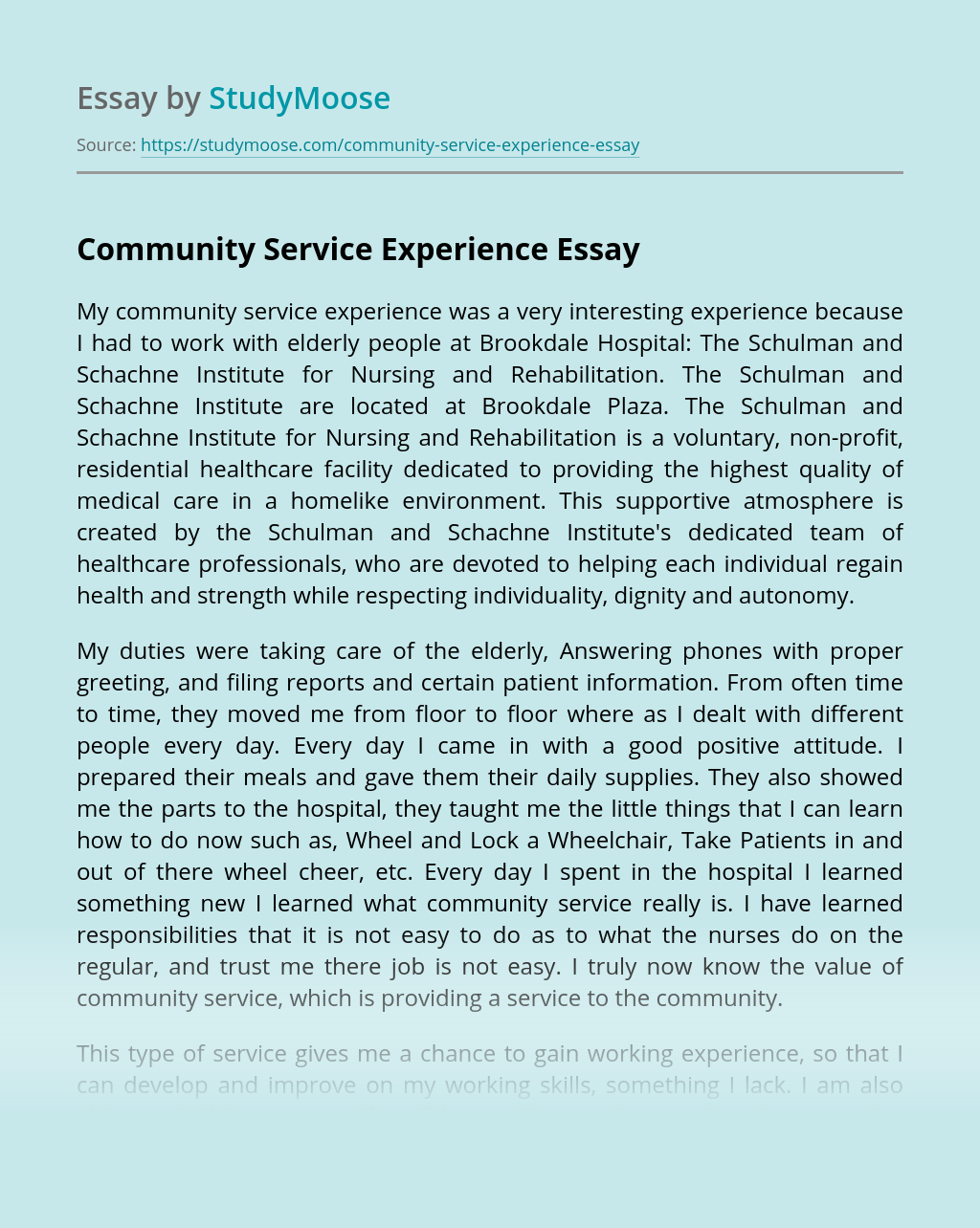 Community Service Experience