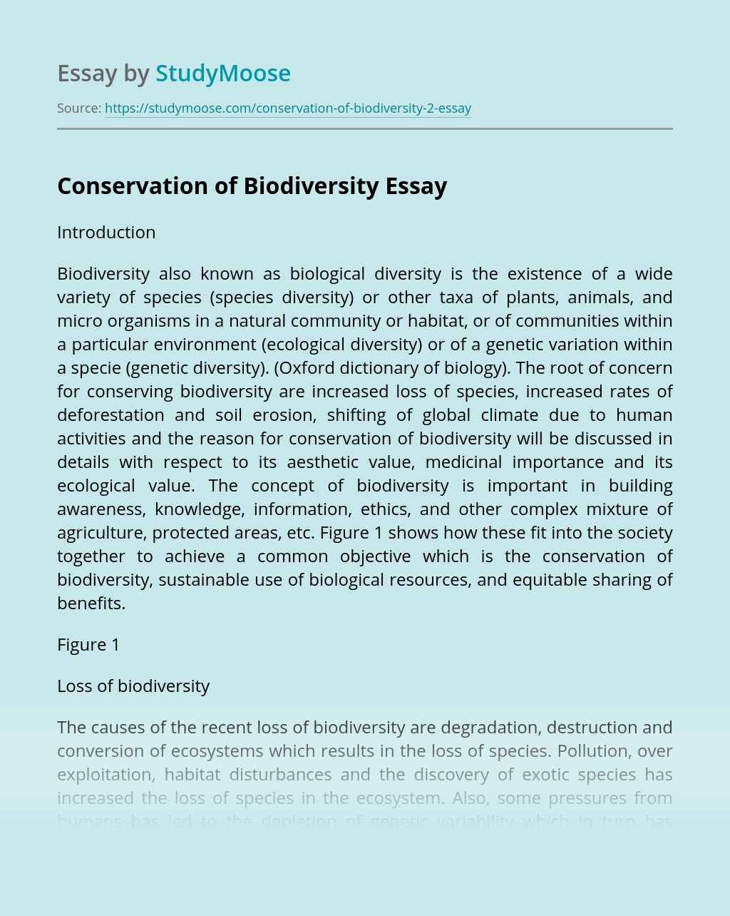Protecting biodiversity through science technology essay sales professional resume objective