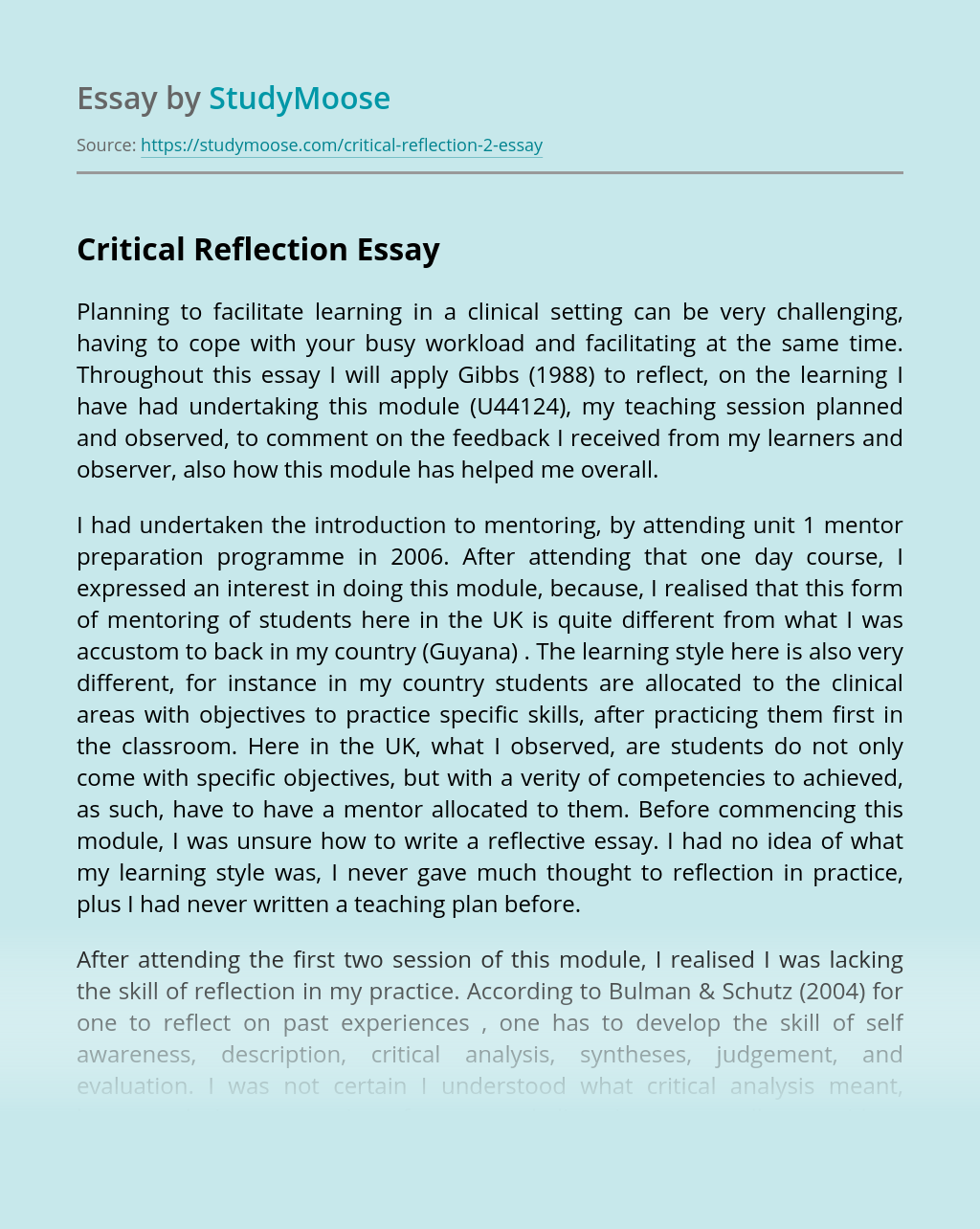 Critical Reflection