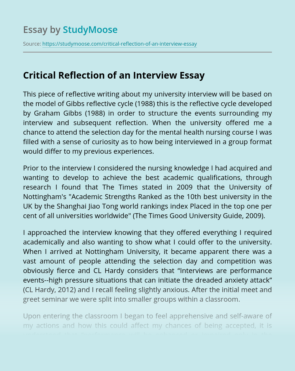 Critical Reflection of an Interview