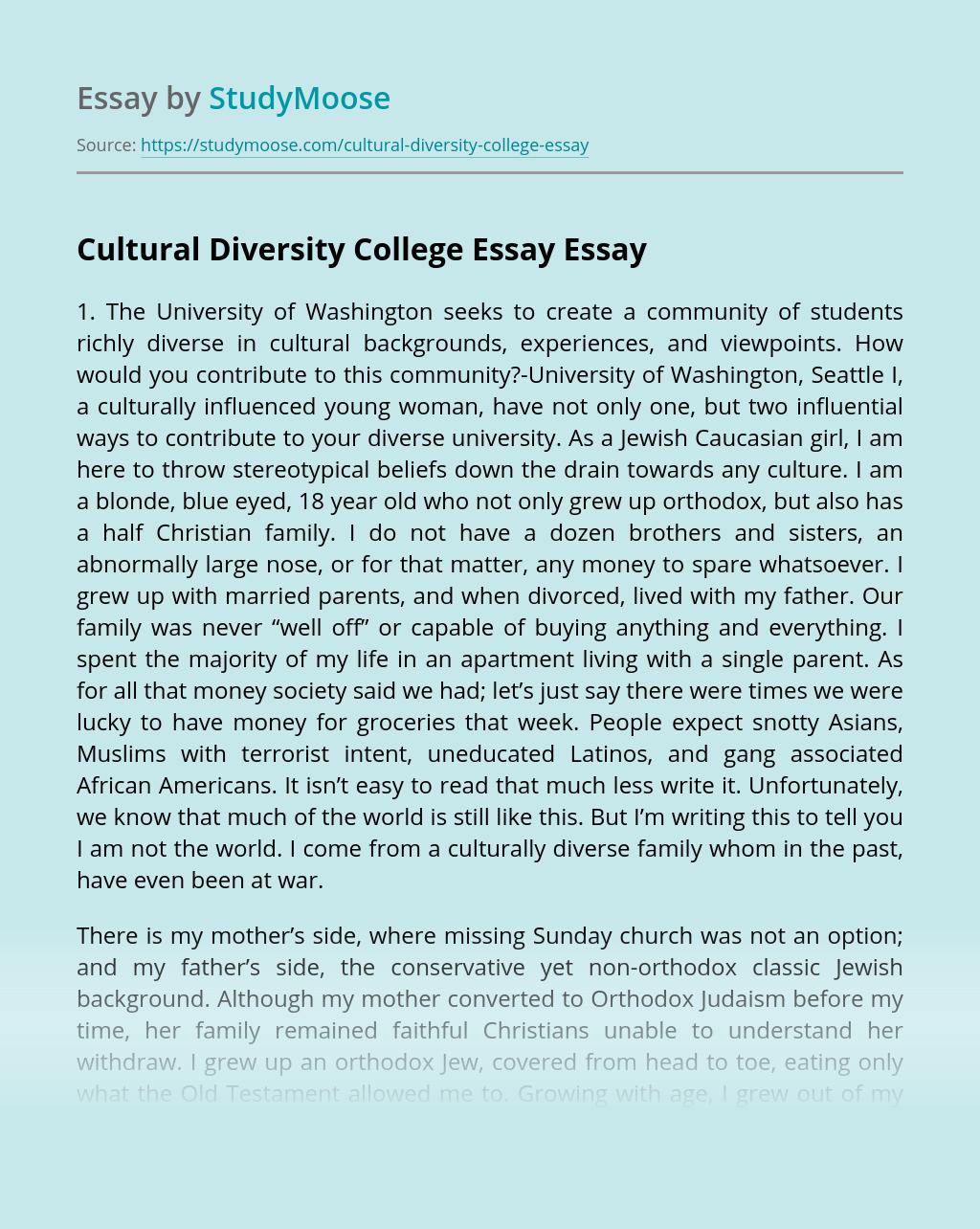 College Diversity Essay