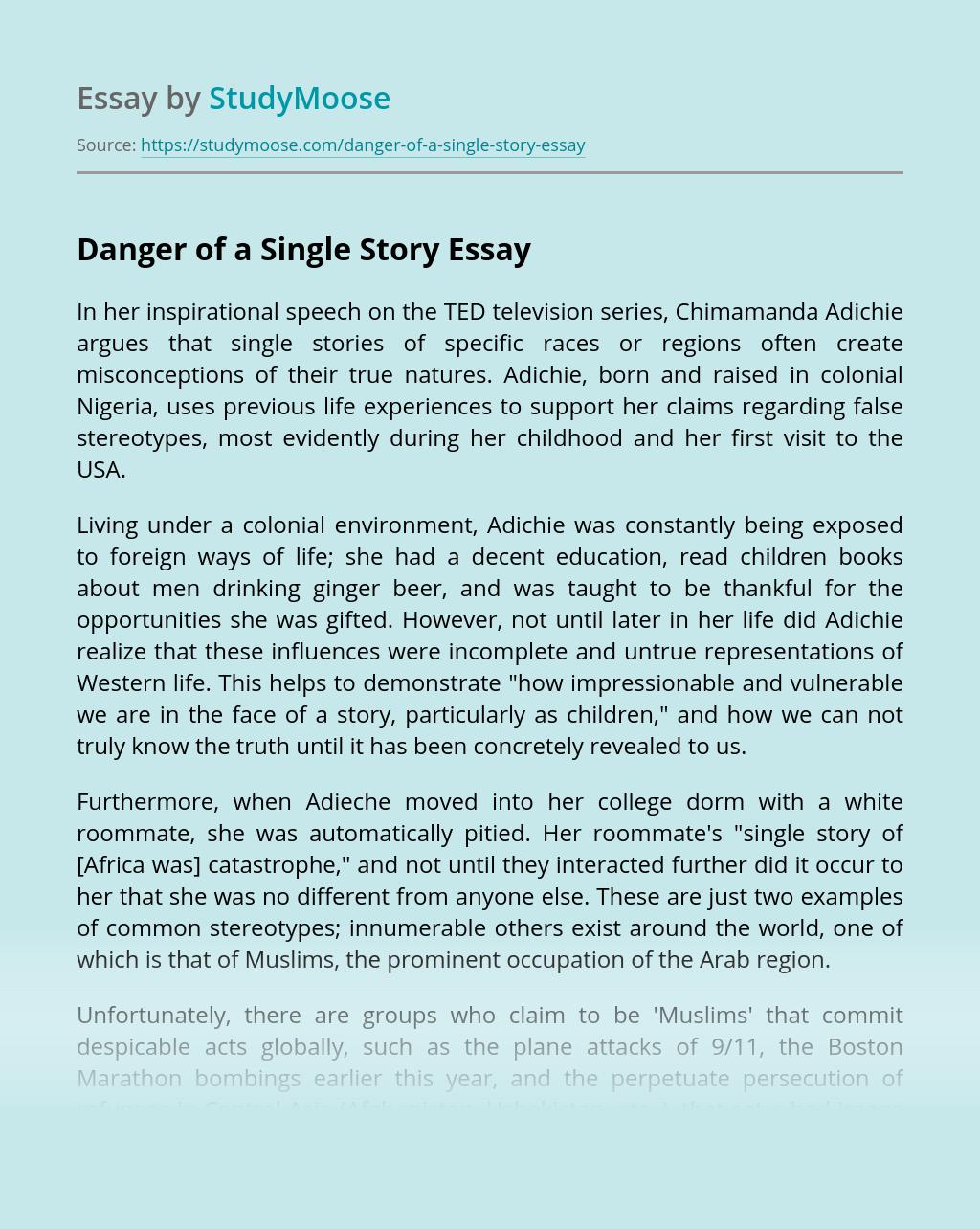 Danger of a Single Story