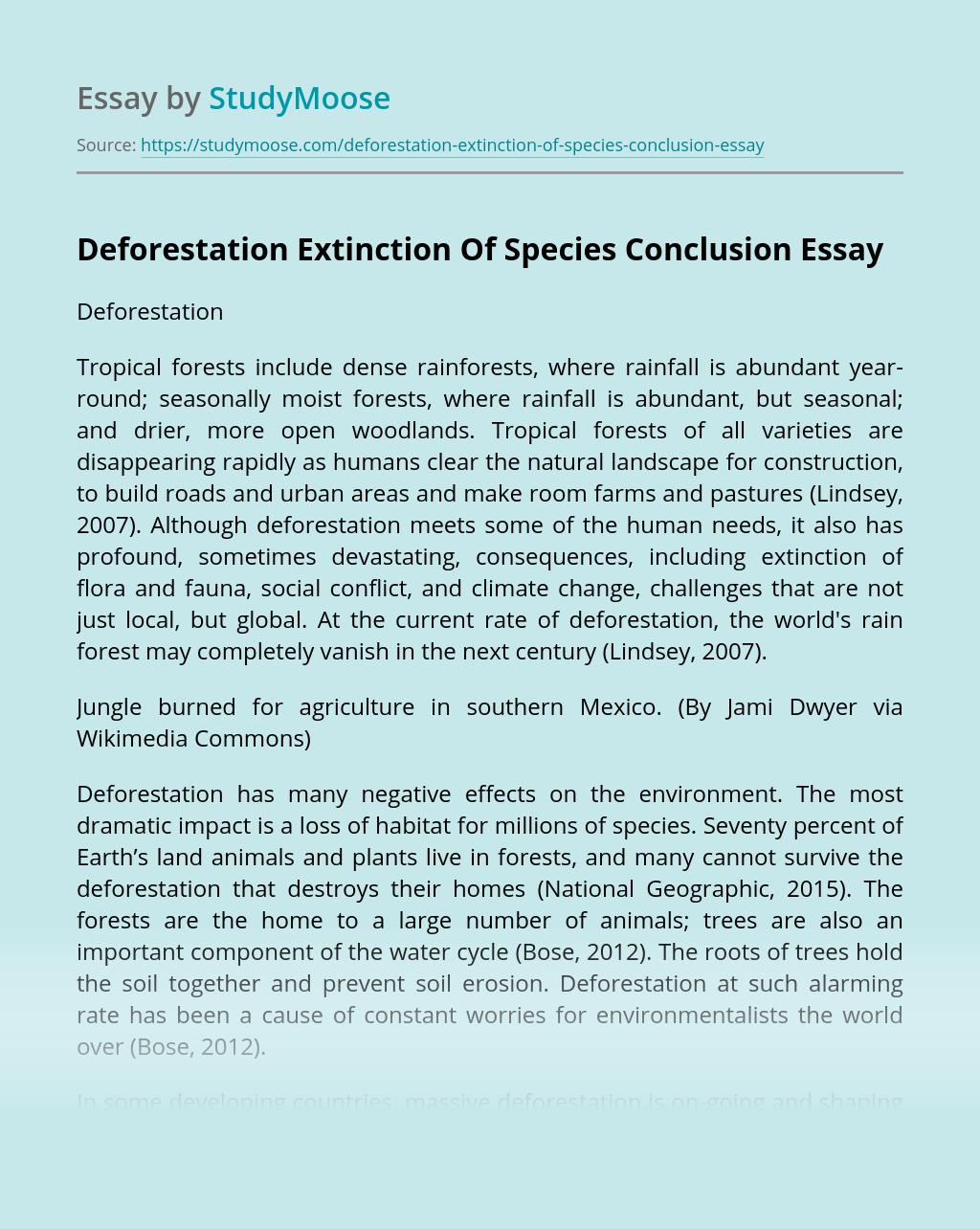 Deforestation Extinction Of Species Conclusion