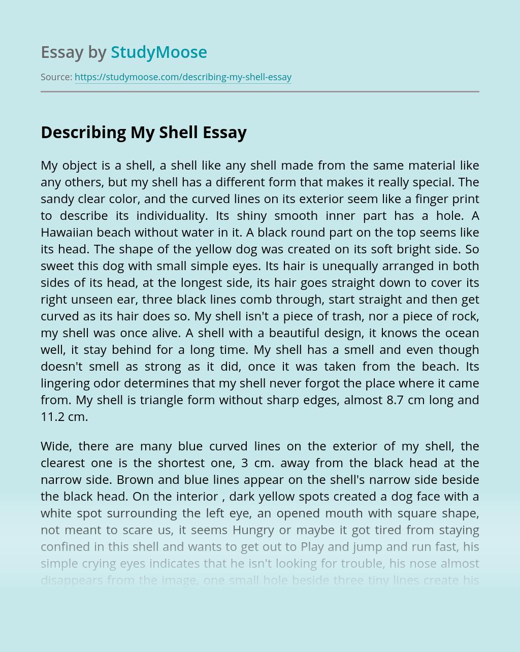 Describing My Shell