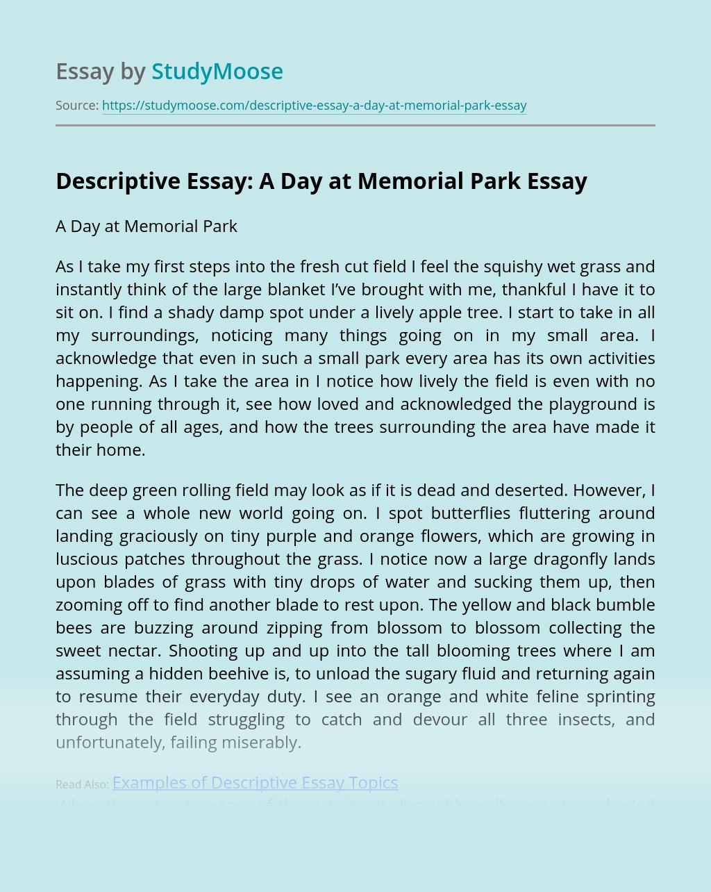 Descriptive Essay: A Day at Memorial Park