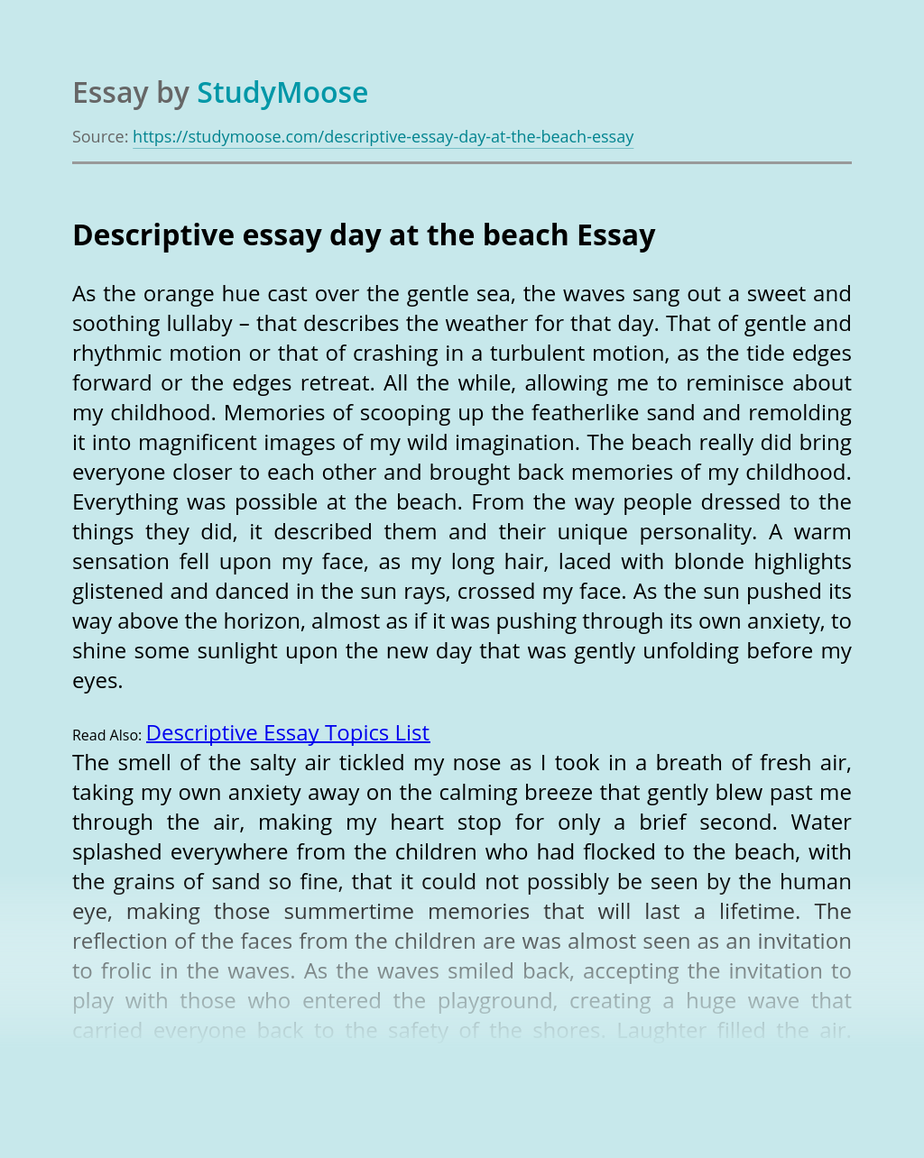 Descriptive essays on the beach