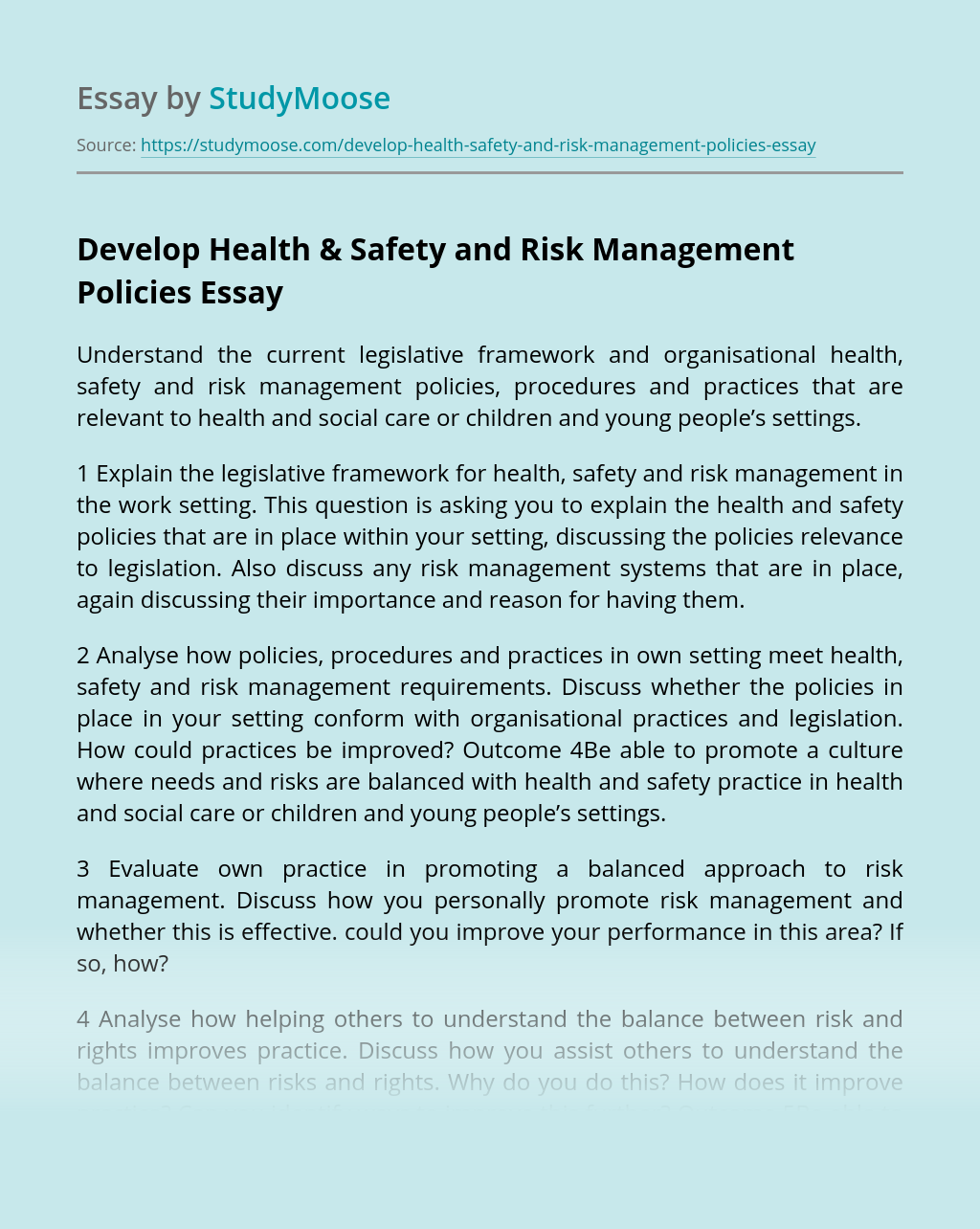 Develop Health & Safety and Risk Management Policies