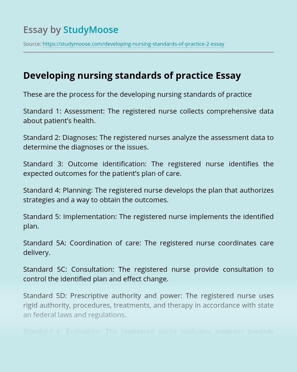 Developing nursing standards of practice