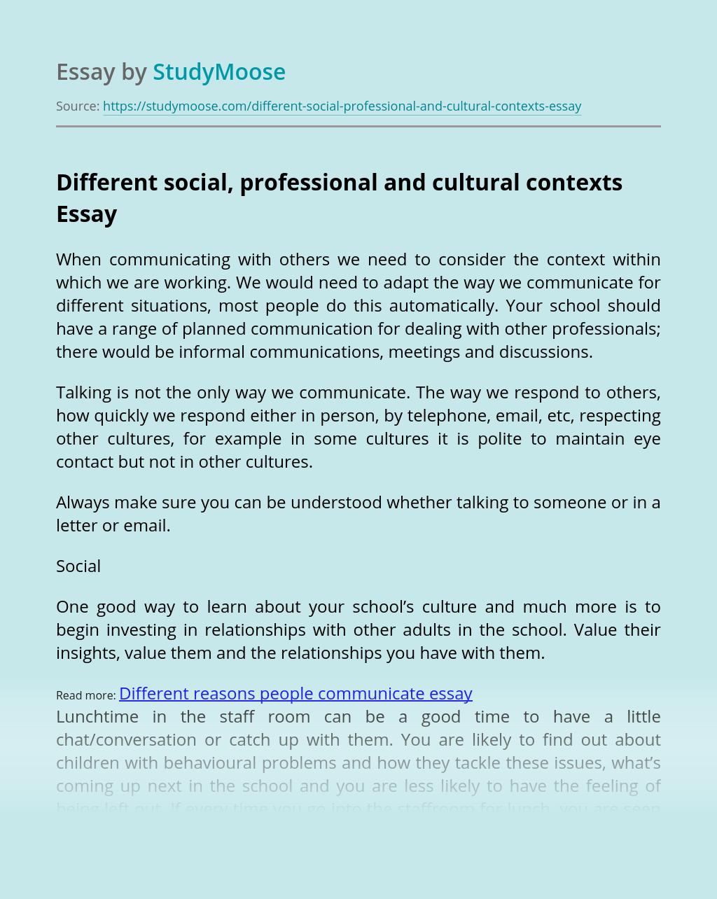 Different Social, Professional and Cultural Contexts