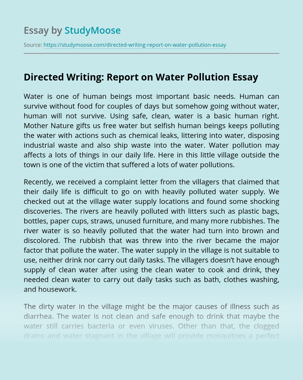 Directed Writing: Report on Water Pollution