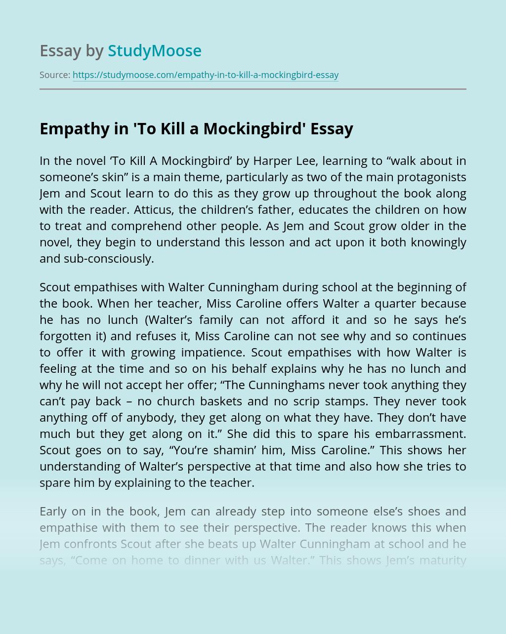 Empathy in 'To Kill a Mockingbird'