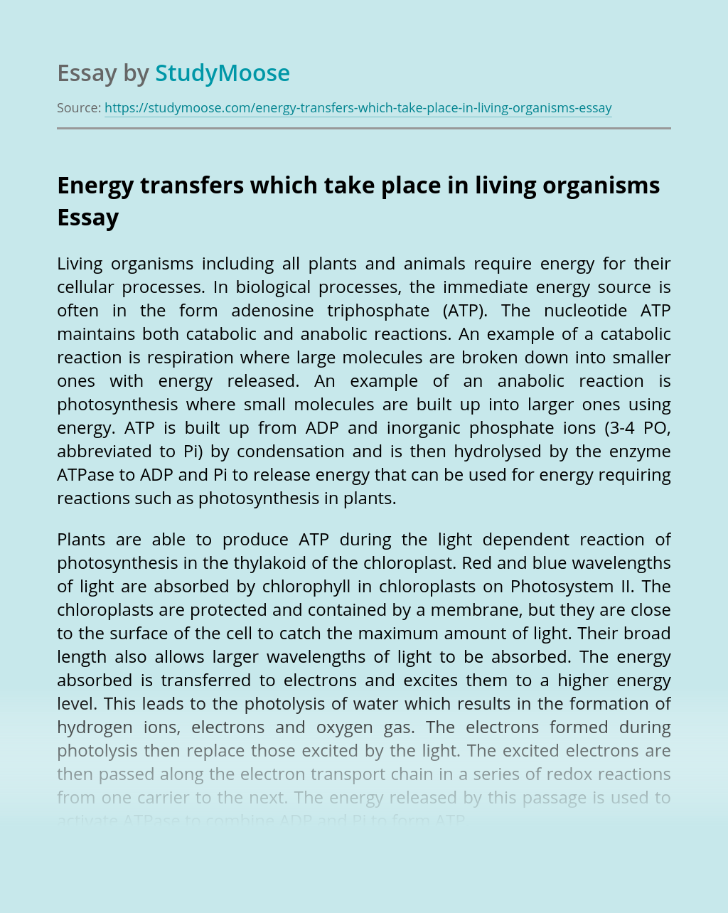 Energy transfers which take place in living organisms