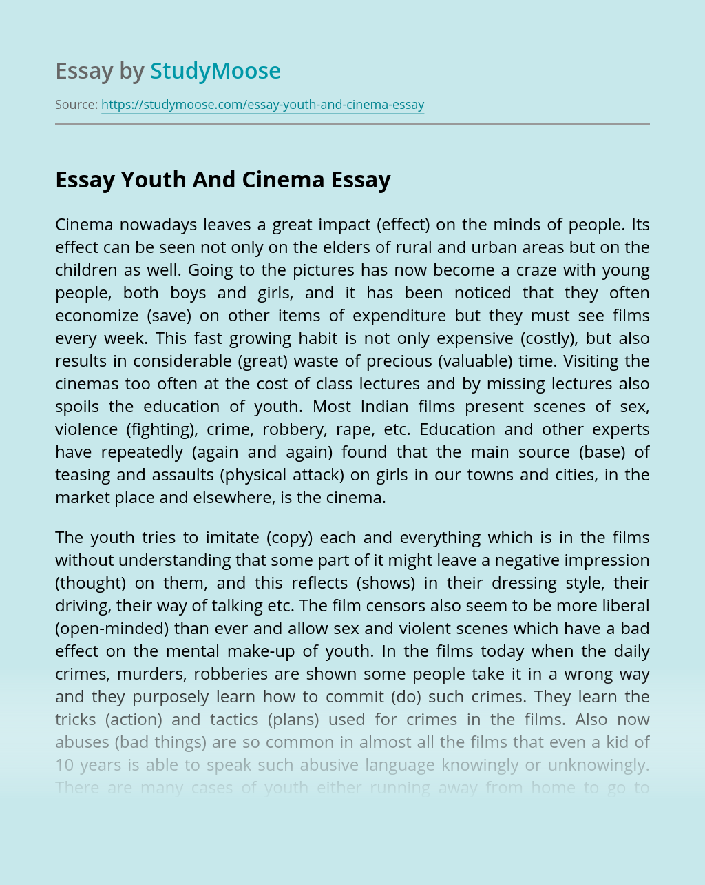 Essay Youth And Cinema