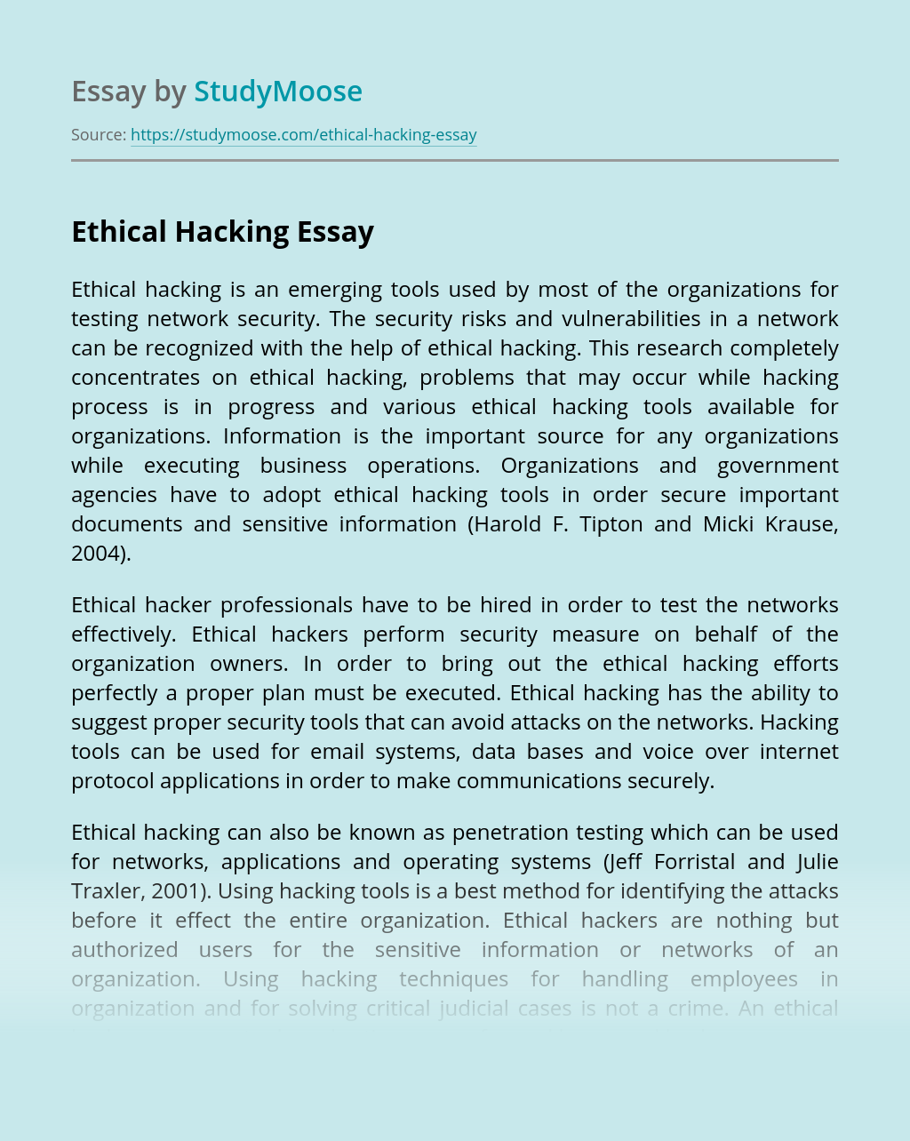 pay to write popular reflective essay on hacking