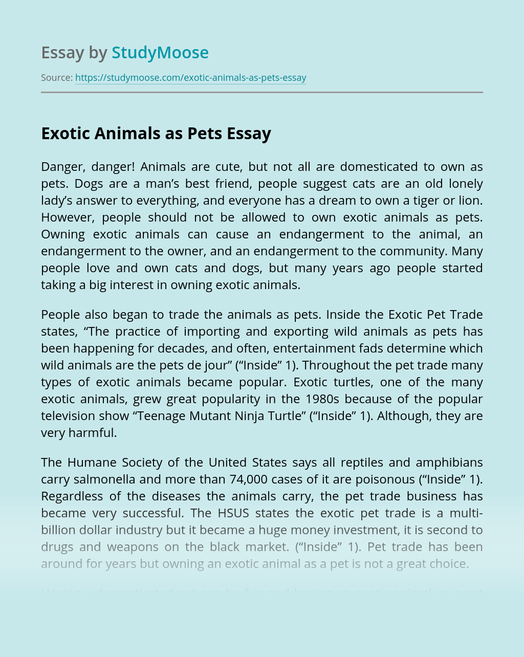 Exotic Animals as Pets