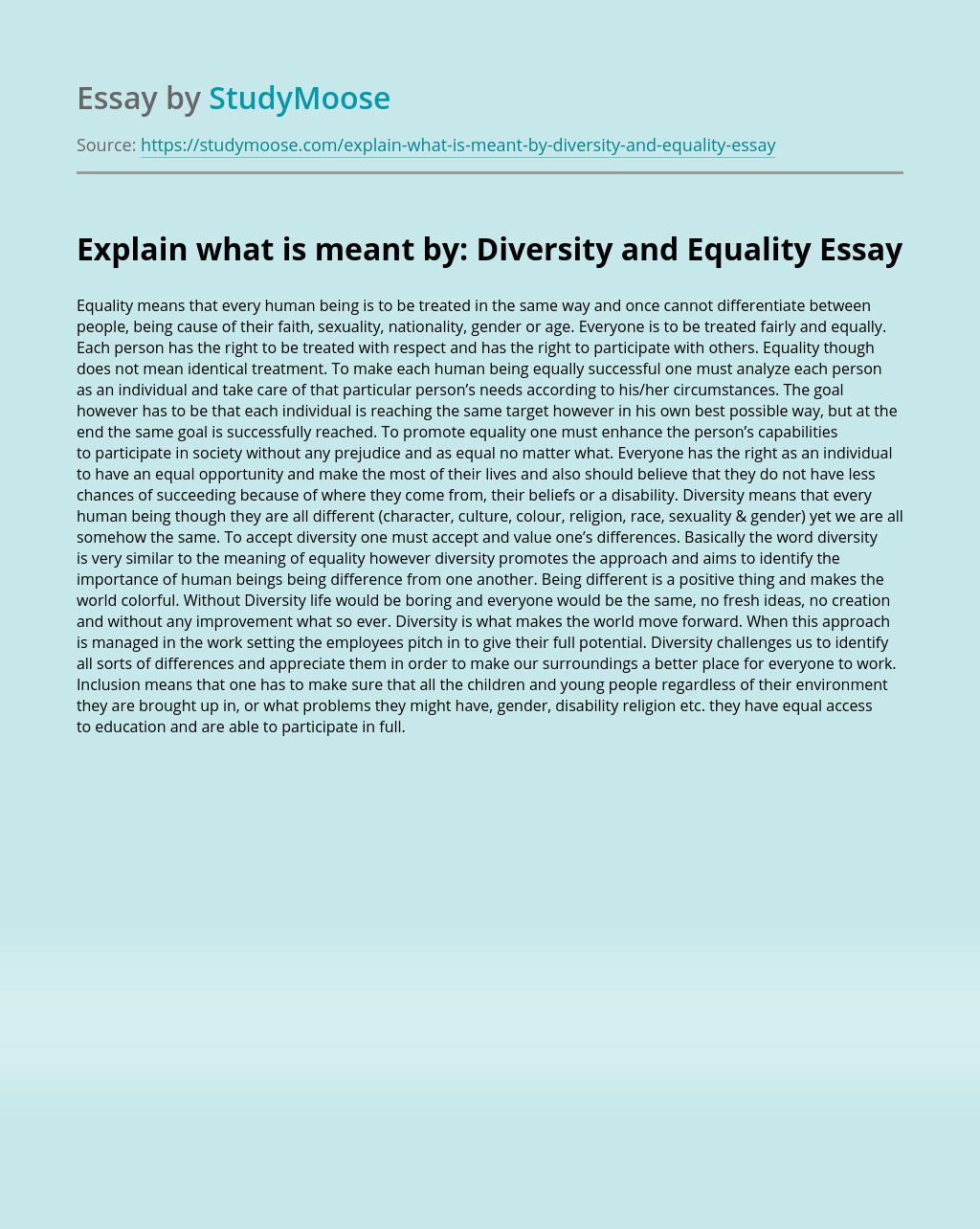 Explain what is meant by: Diversity and Equality