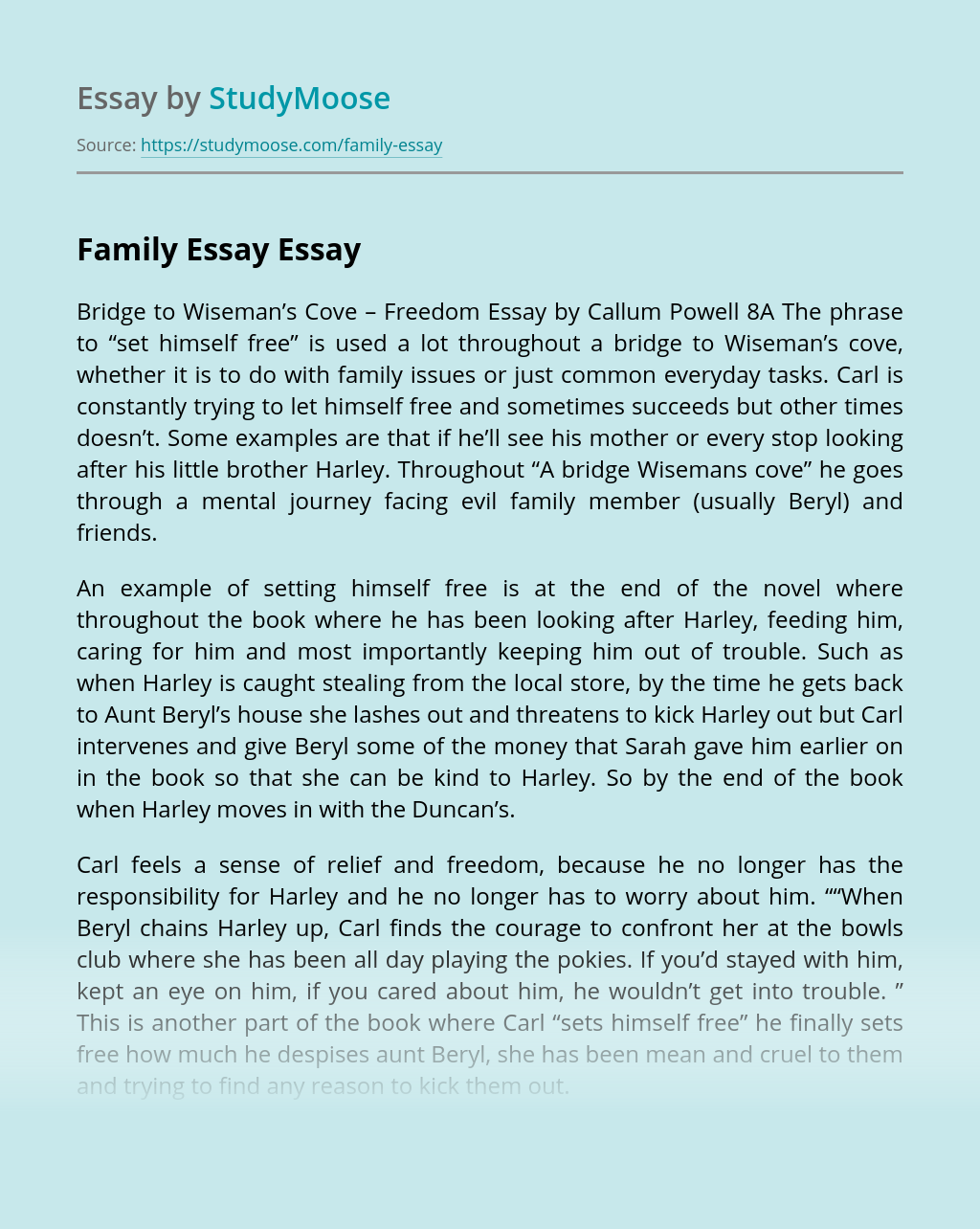 Family Essay