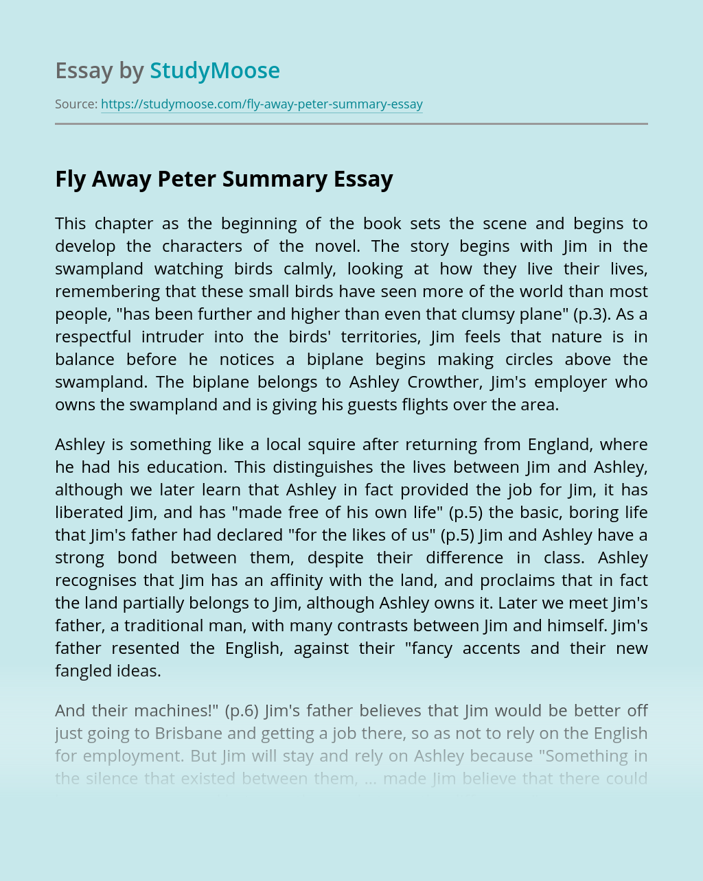 Fly Away Peter Summary