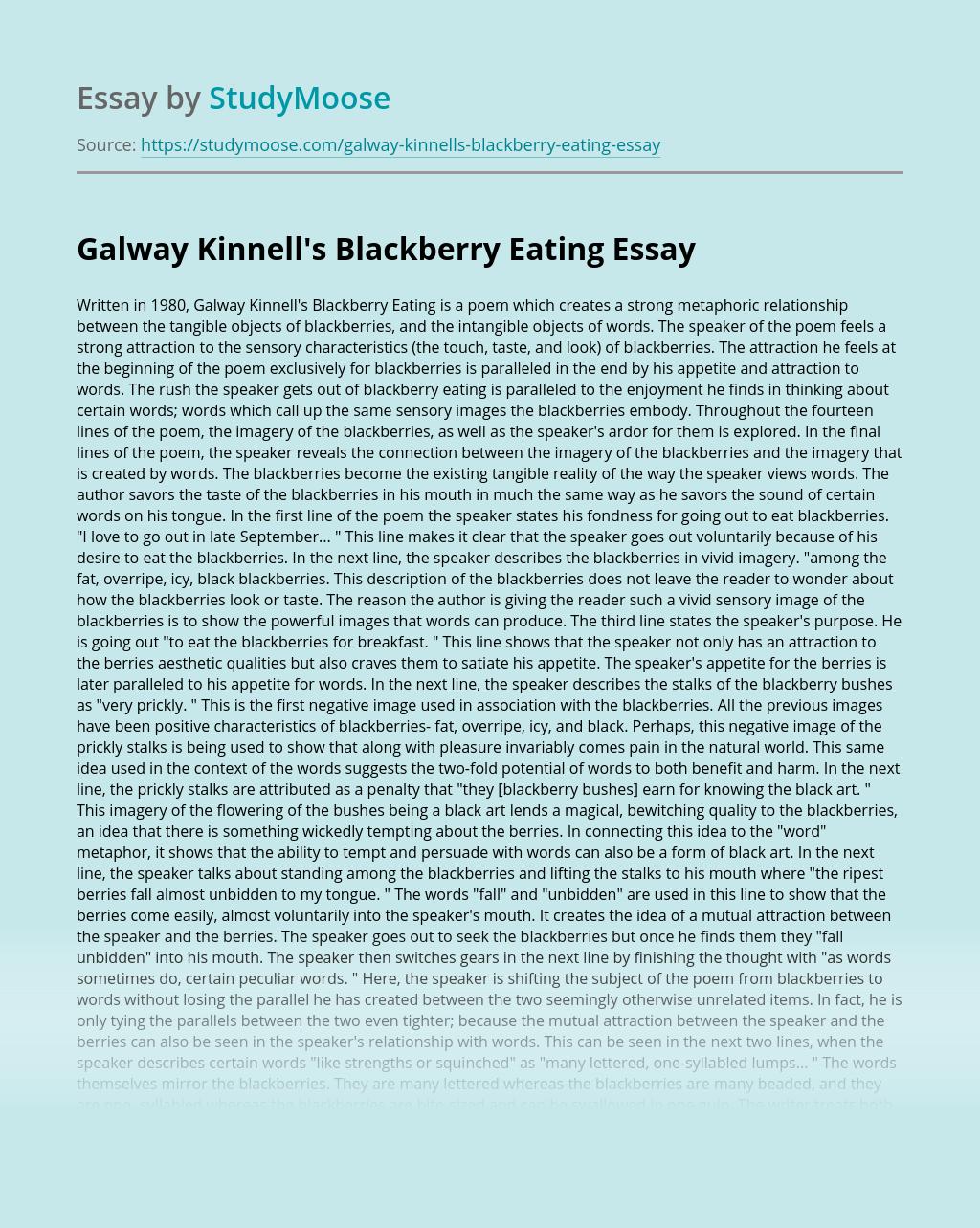 Galway Kinnell's Blackberry Eating