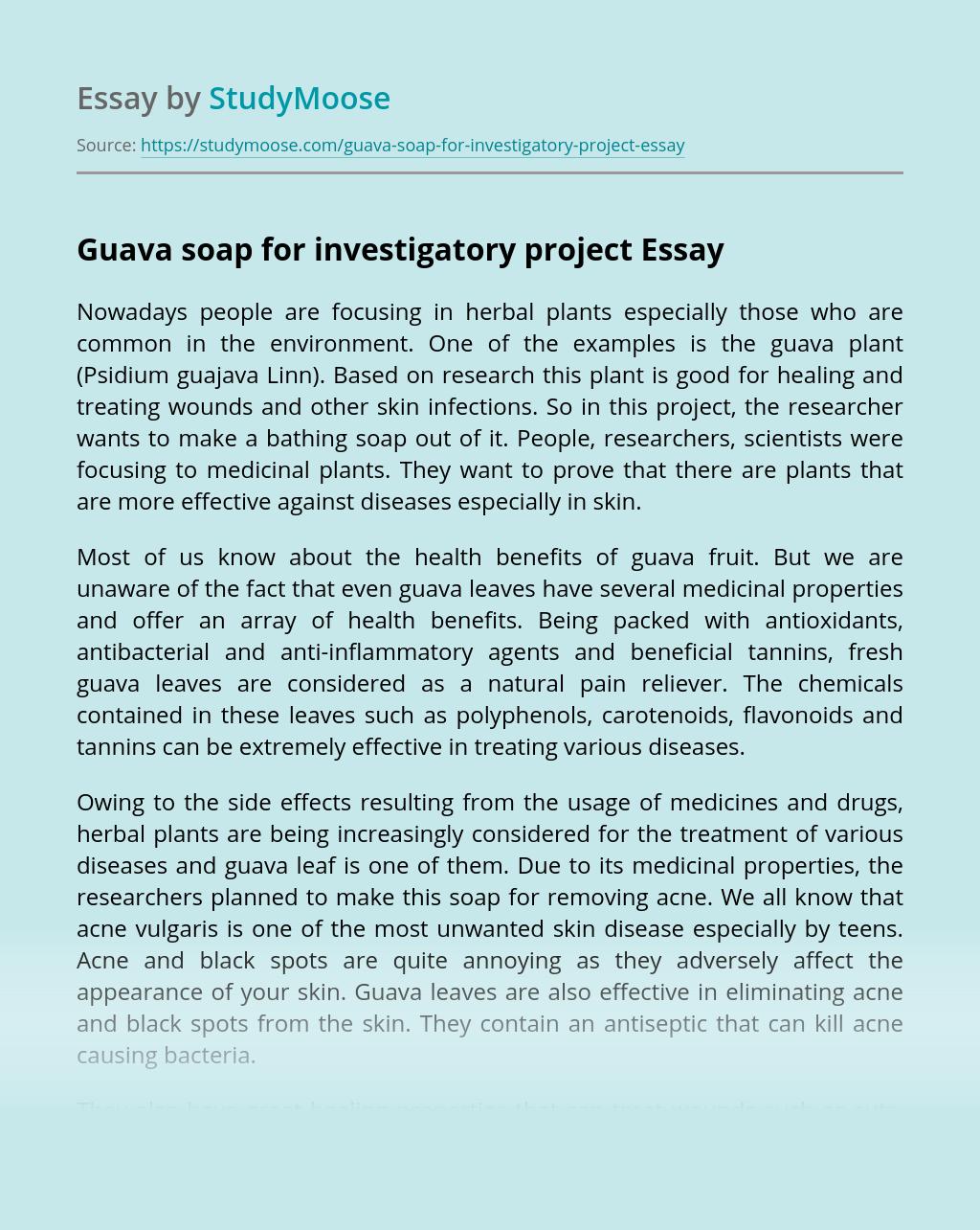 Guava soap for investigatory project