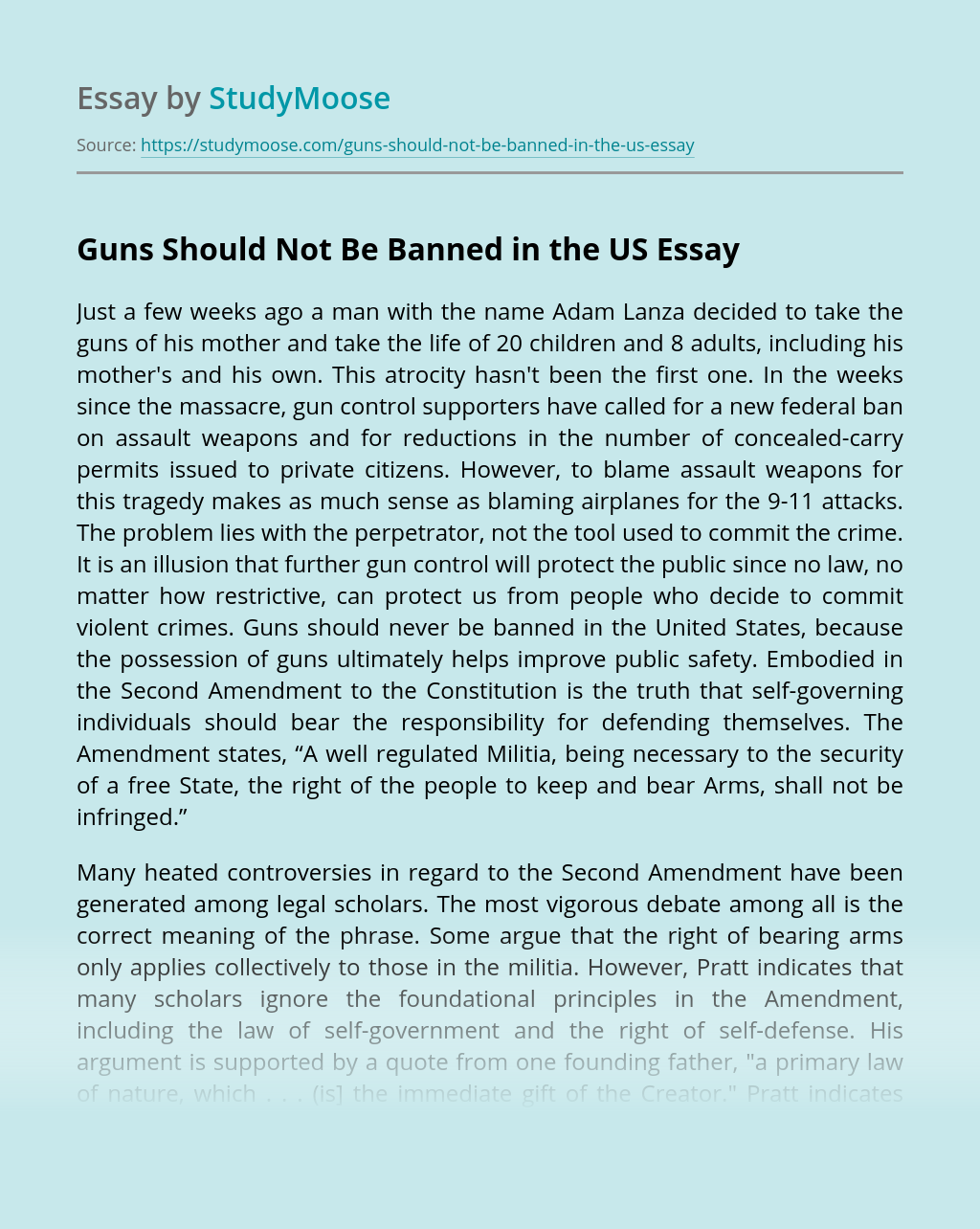 Guns Should Not Be Banned in the US