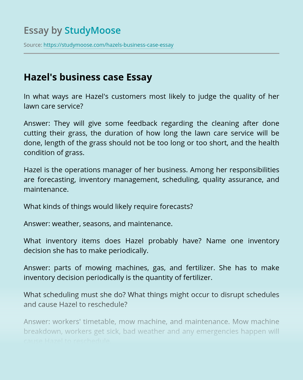 Hazel's business case