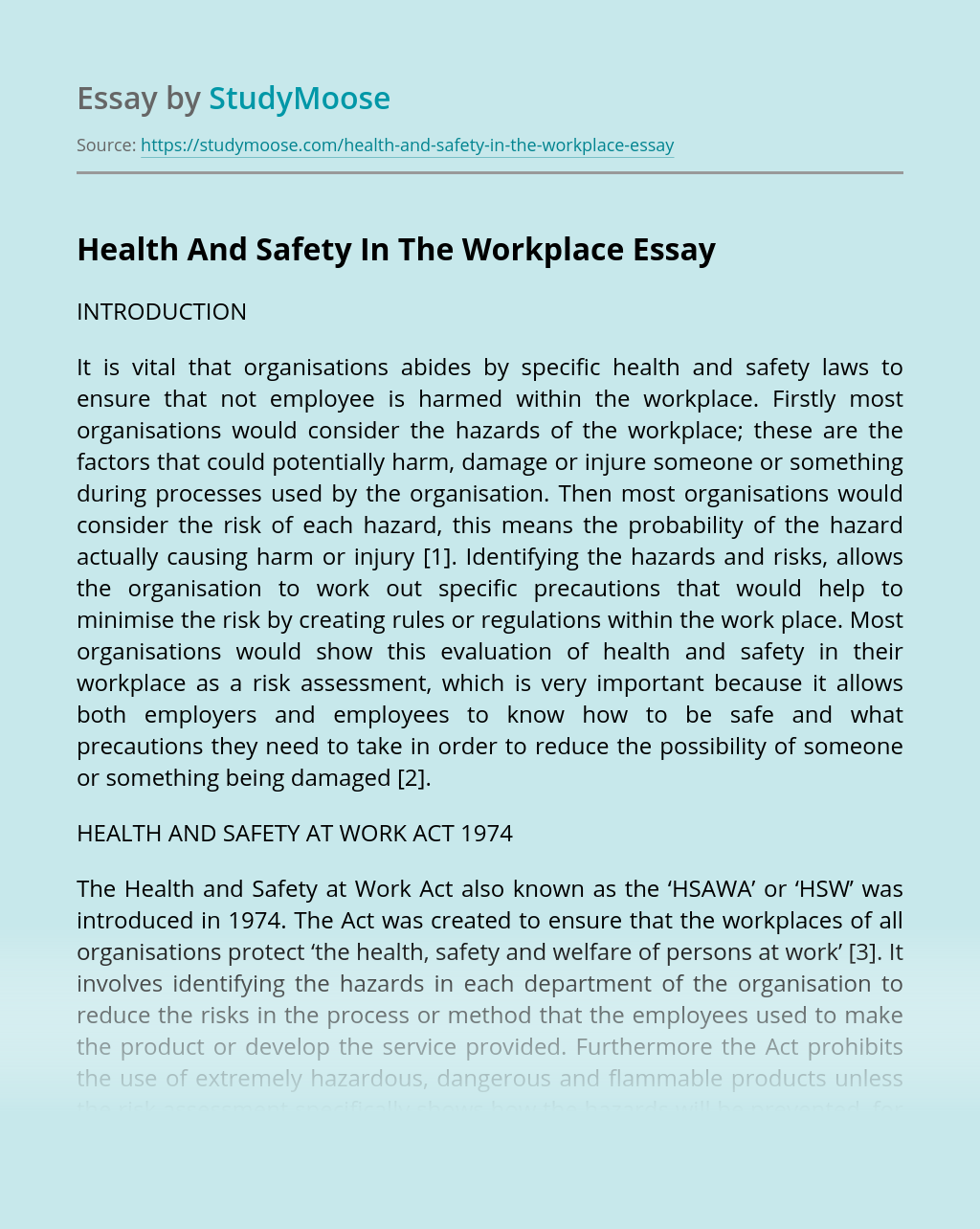 Health And Safety In The Workplace Free Essay Example