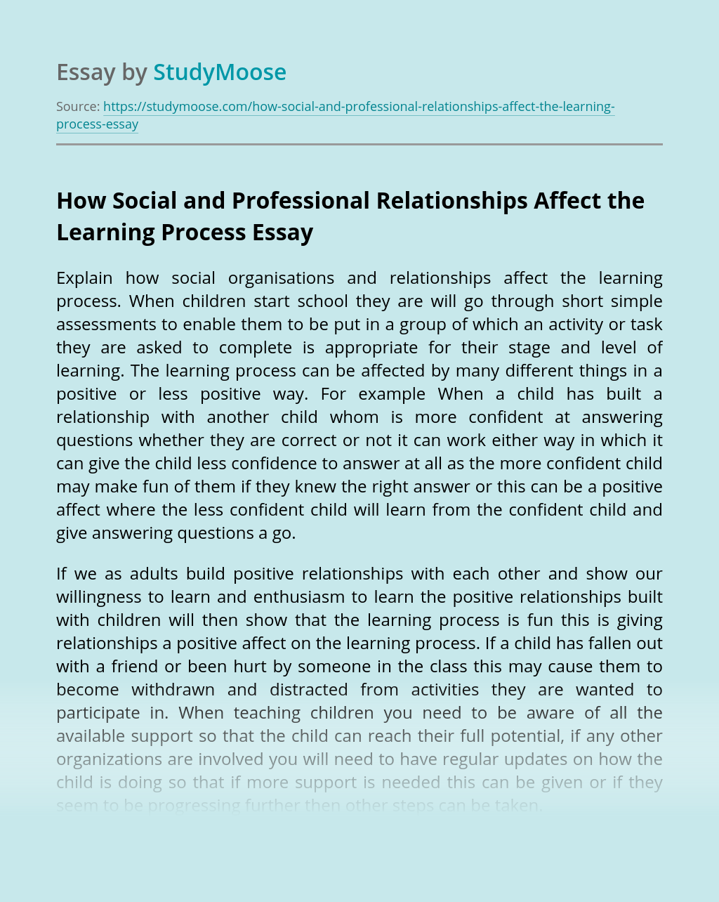 How Social and Professional Relationships Affect the Learning Process