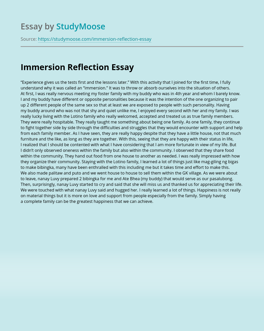Immersion Reflection
