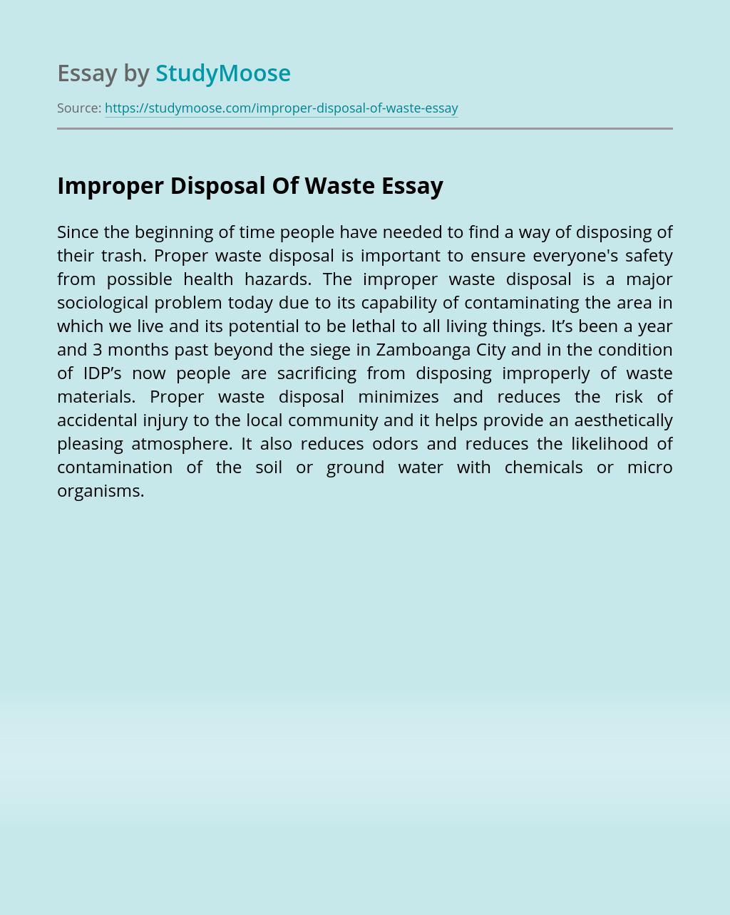 Improper Disposal Of Waste