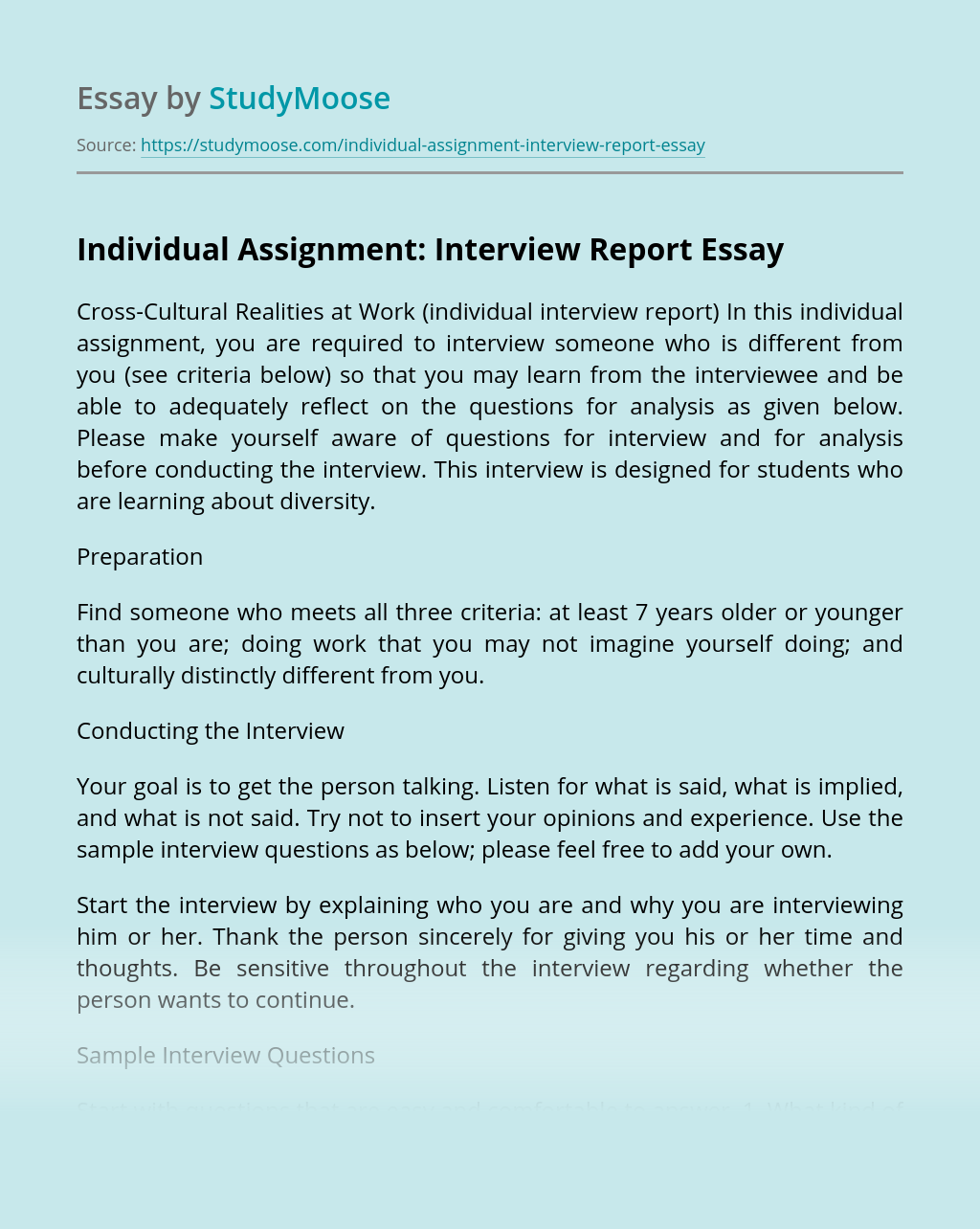 Individual Assignment: Interview Report