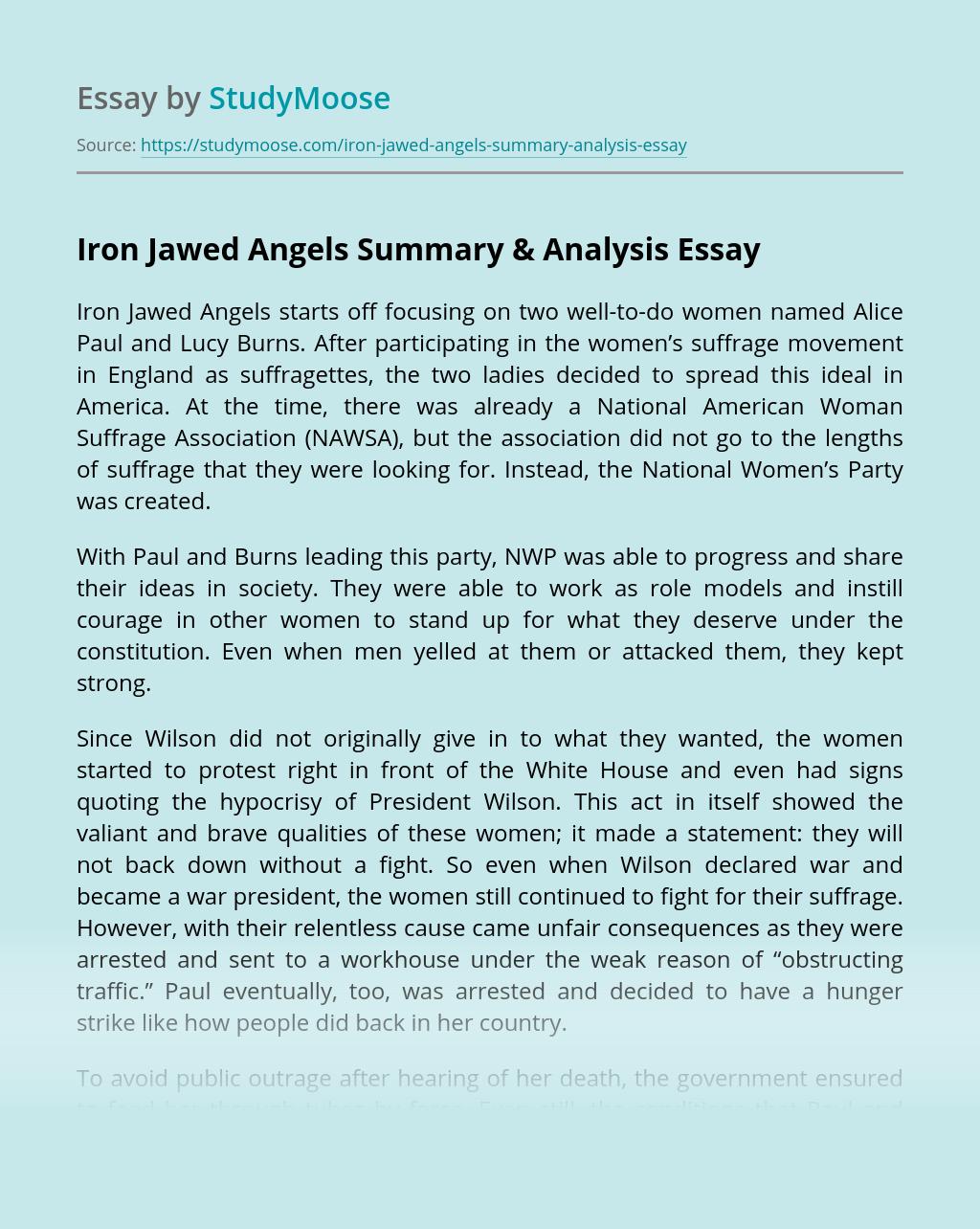 Iron Jawed Angels Summary & Analysis