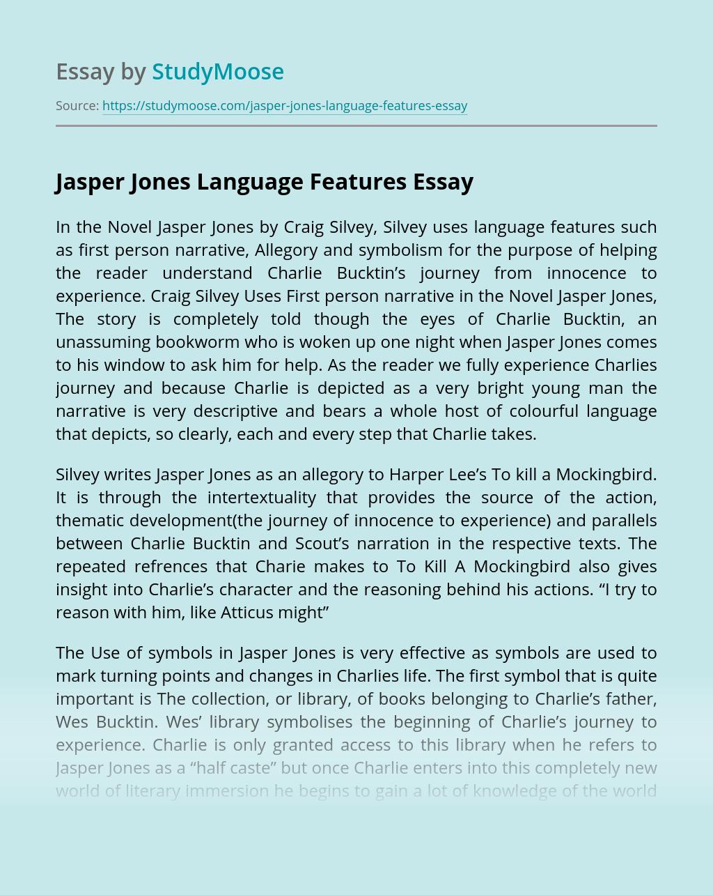 Jasper Jones Language Features