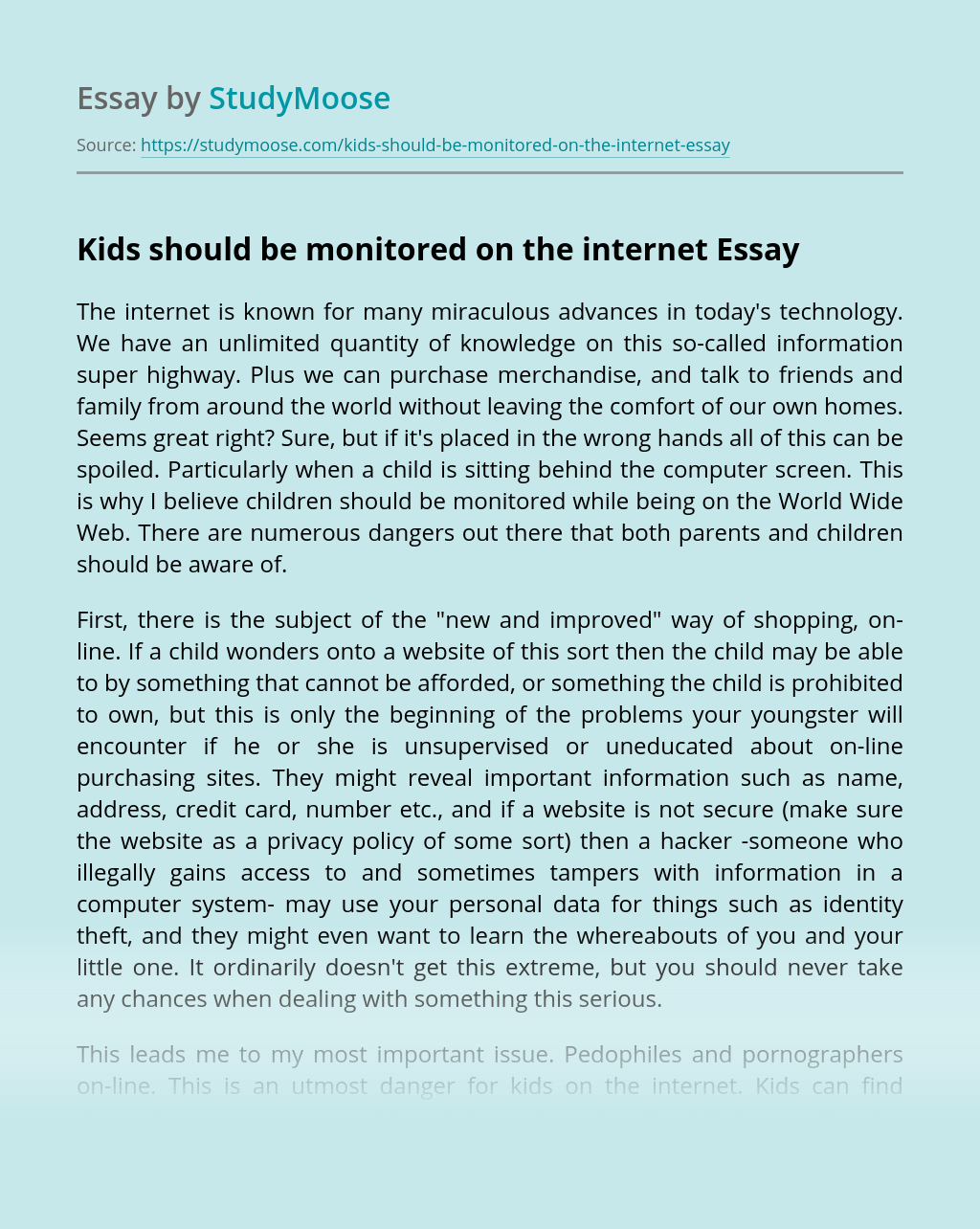 Kids should be monitored on the internet