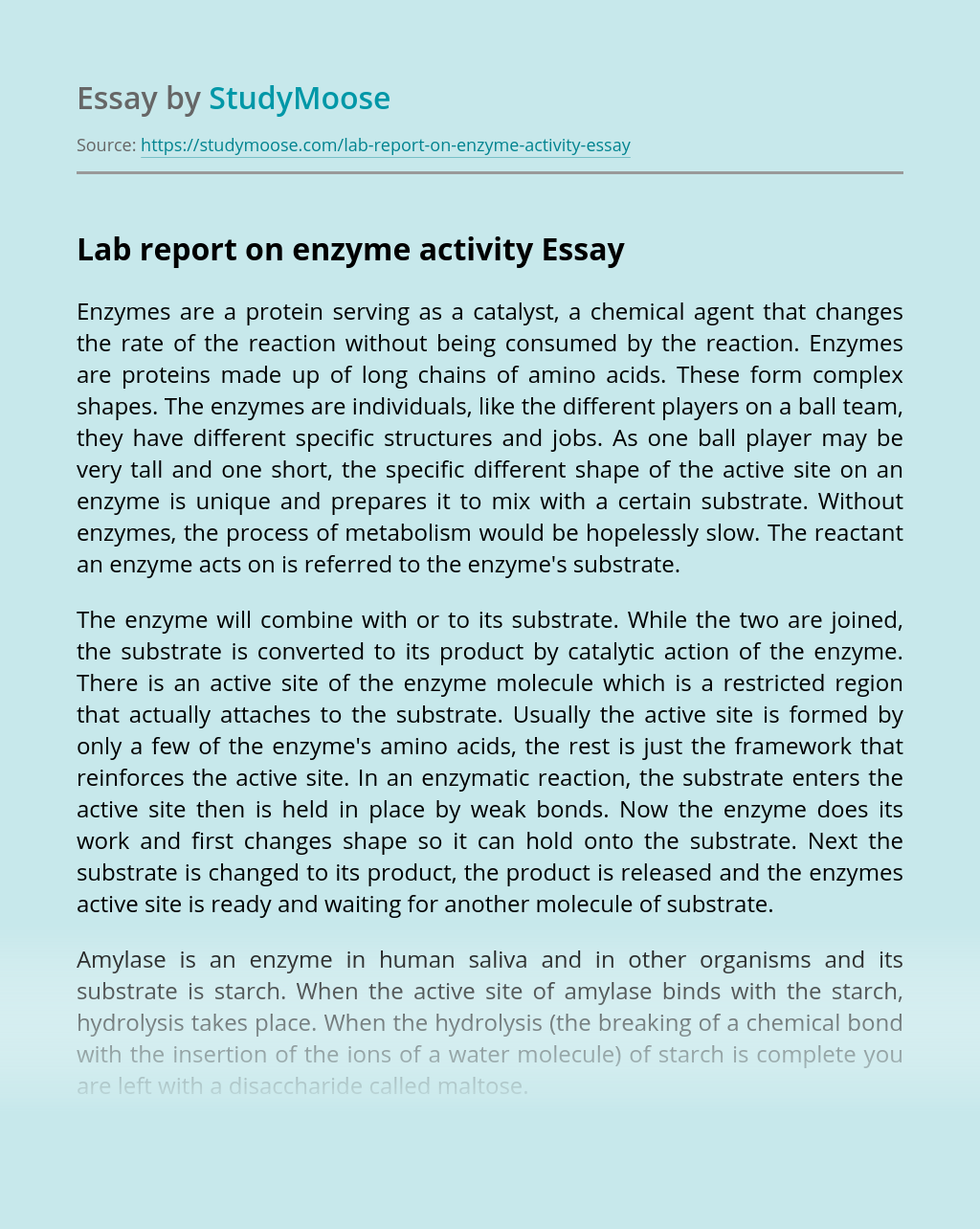 Lab report on enzyme activity