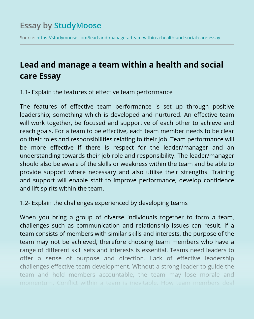 Lead and manage a team within a health and social care