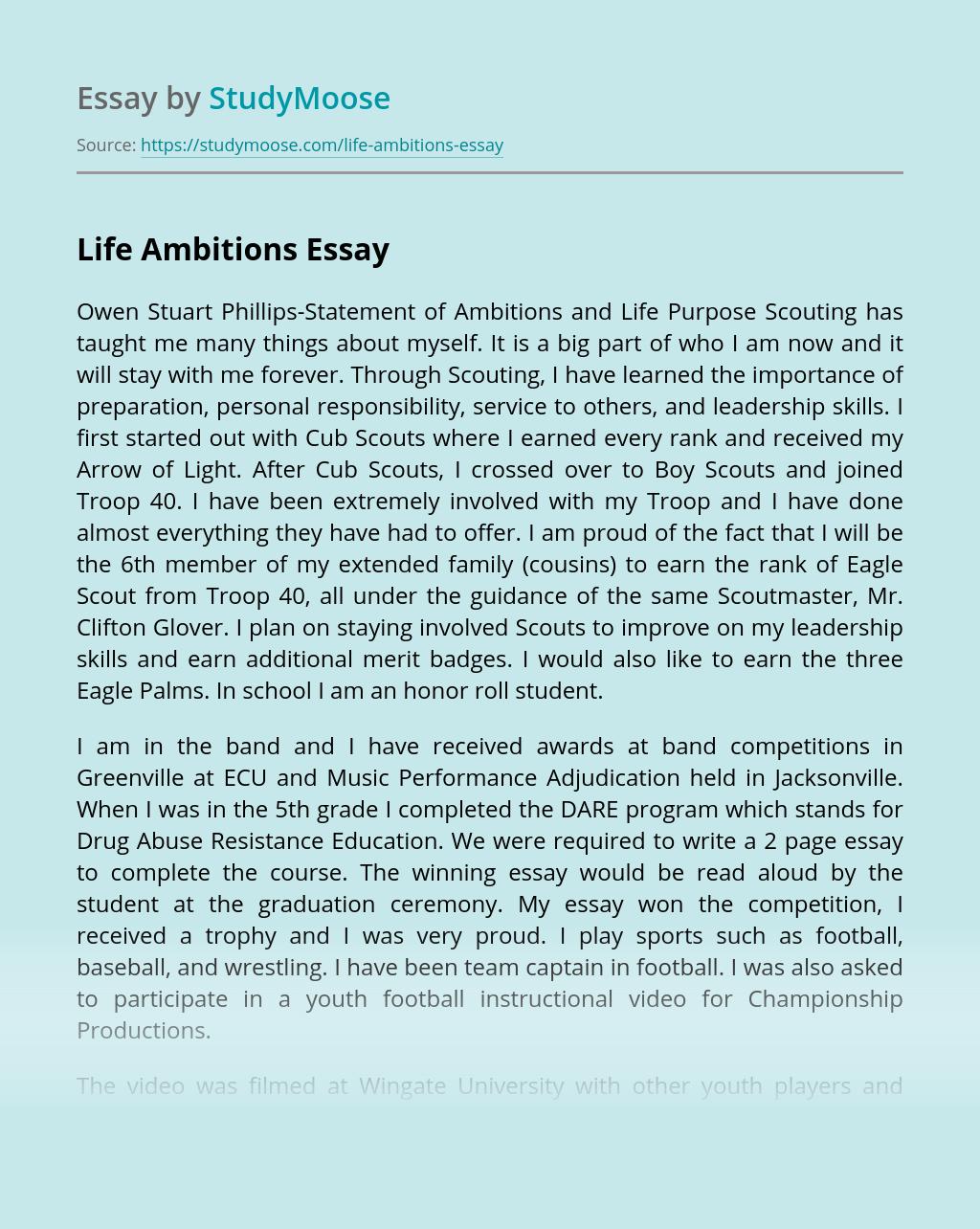 Life Ambitions