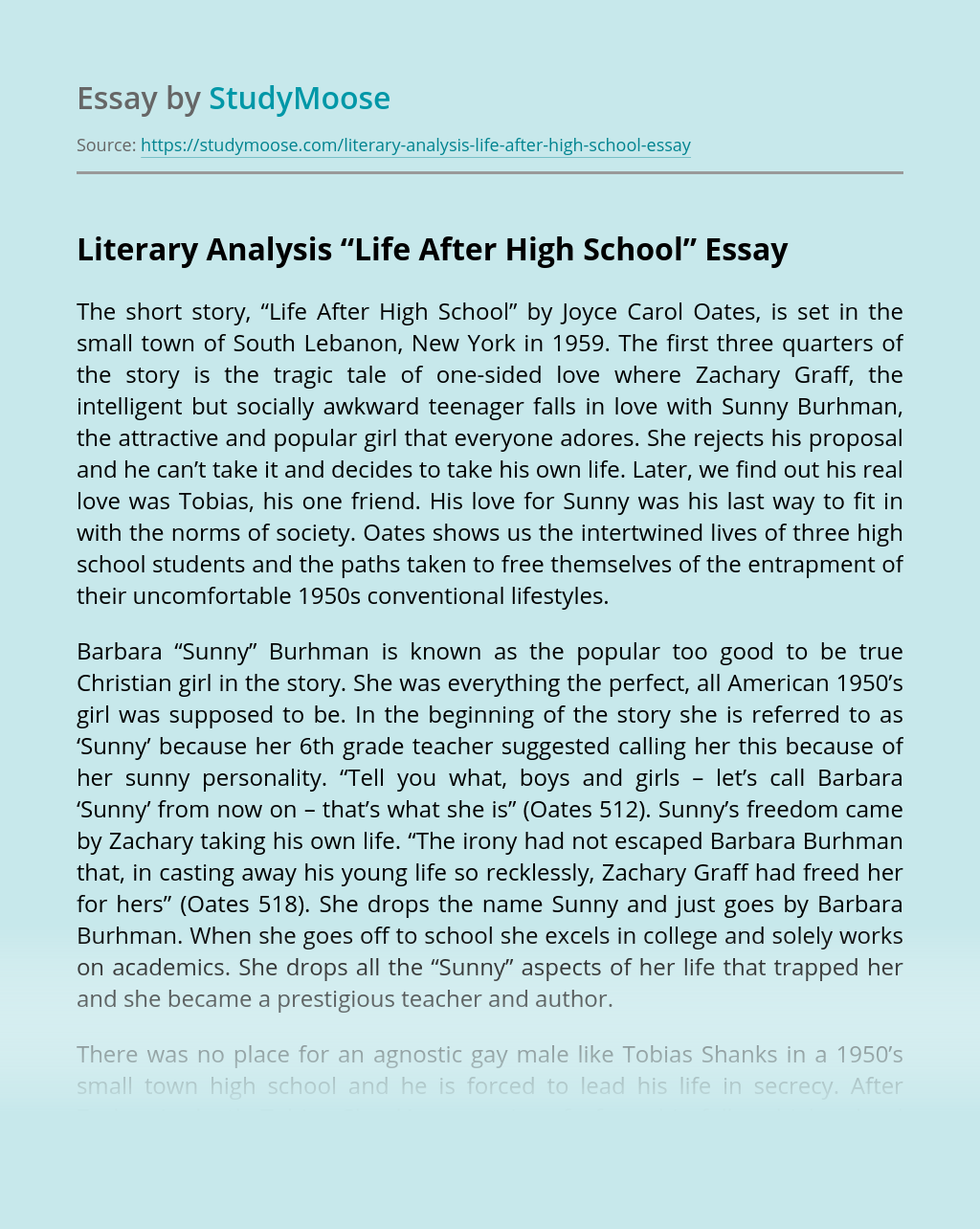 "Literary Analysis ""Life After High School"""